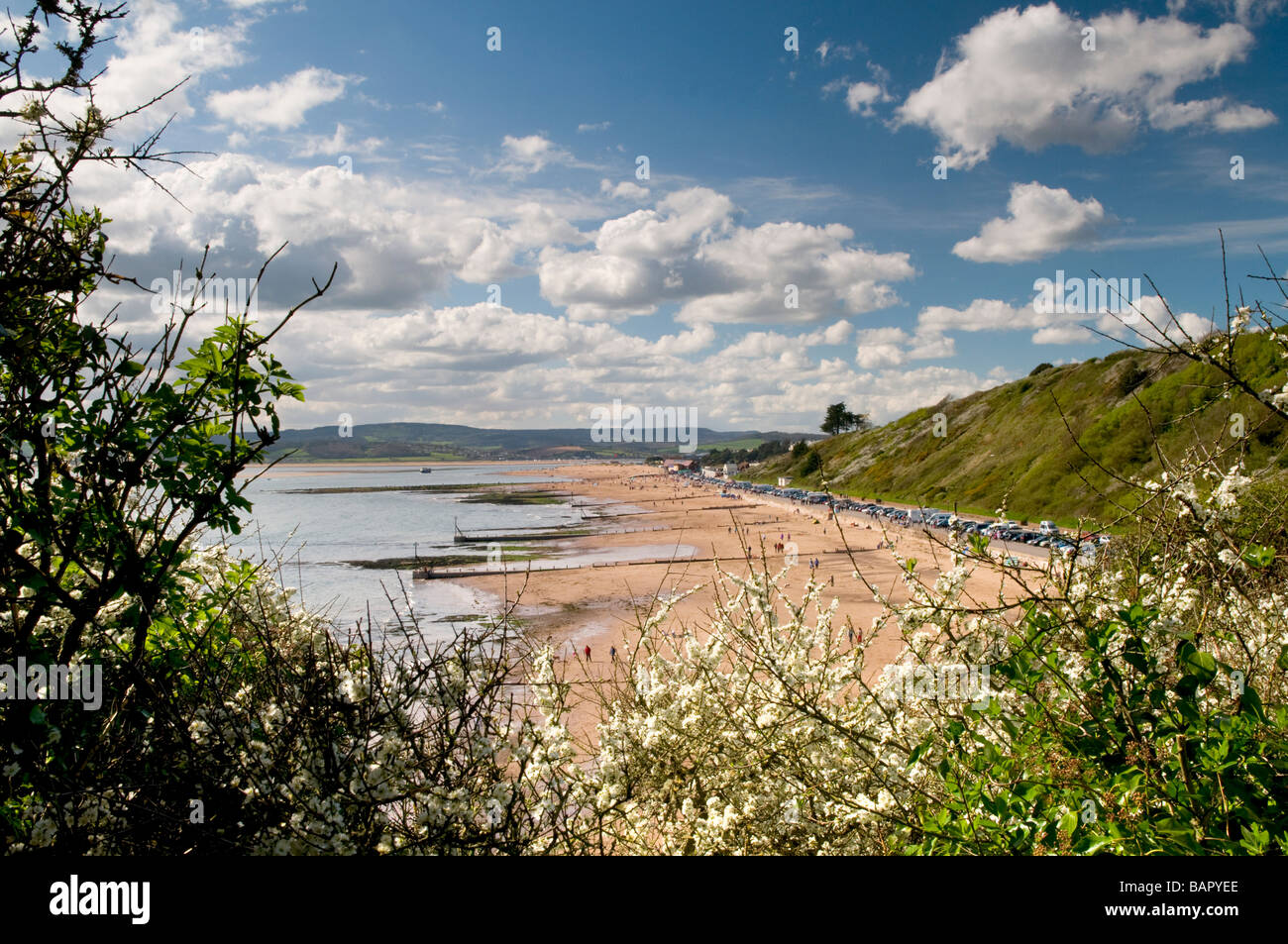 Looking Along Exmouth Beach In Spring, Devon UK Stock Photo