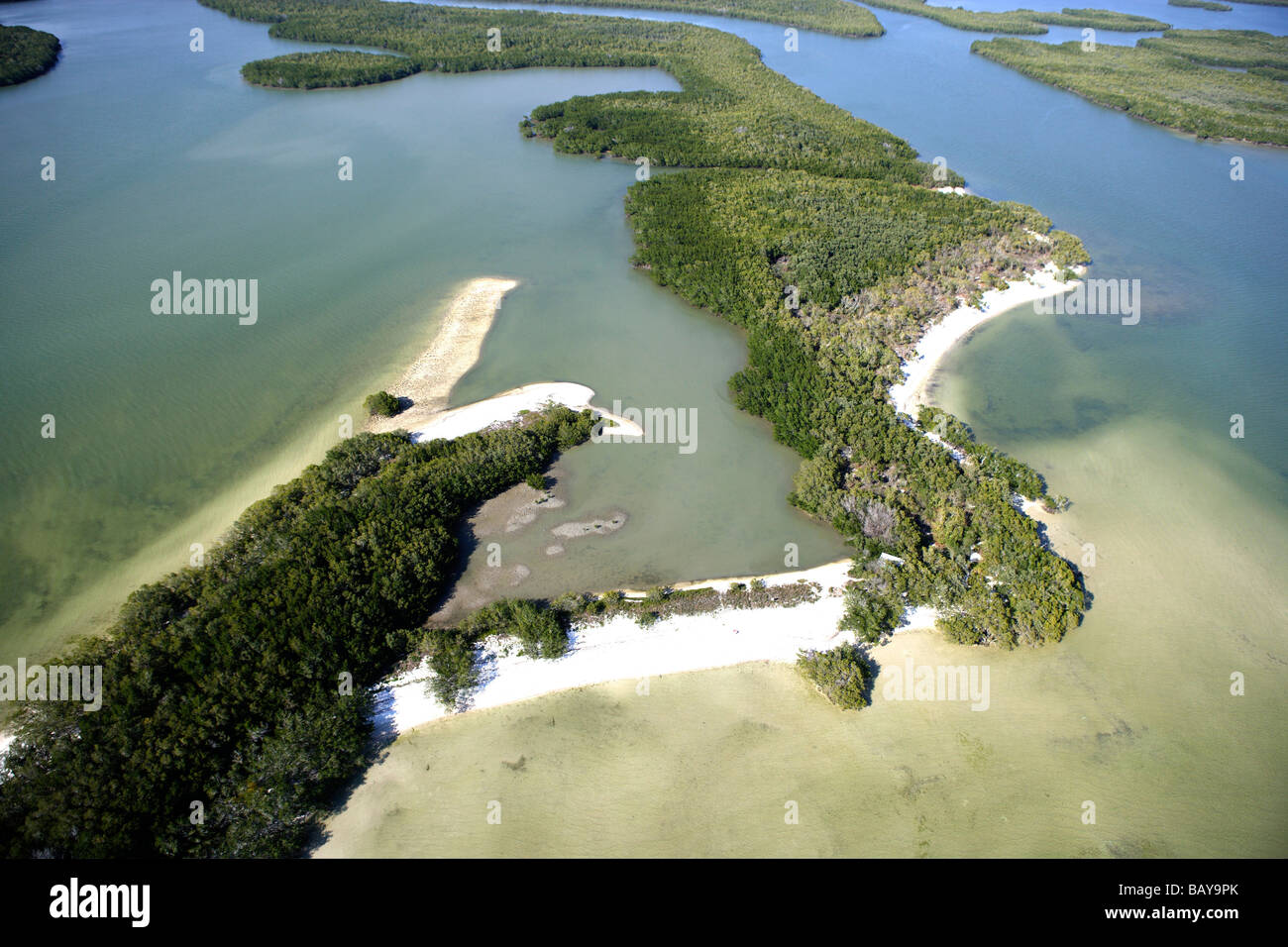Aerial view of mangroves at Ten Thousand Islands National Wildlife Refuge, Florida, USA - Stock Image