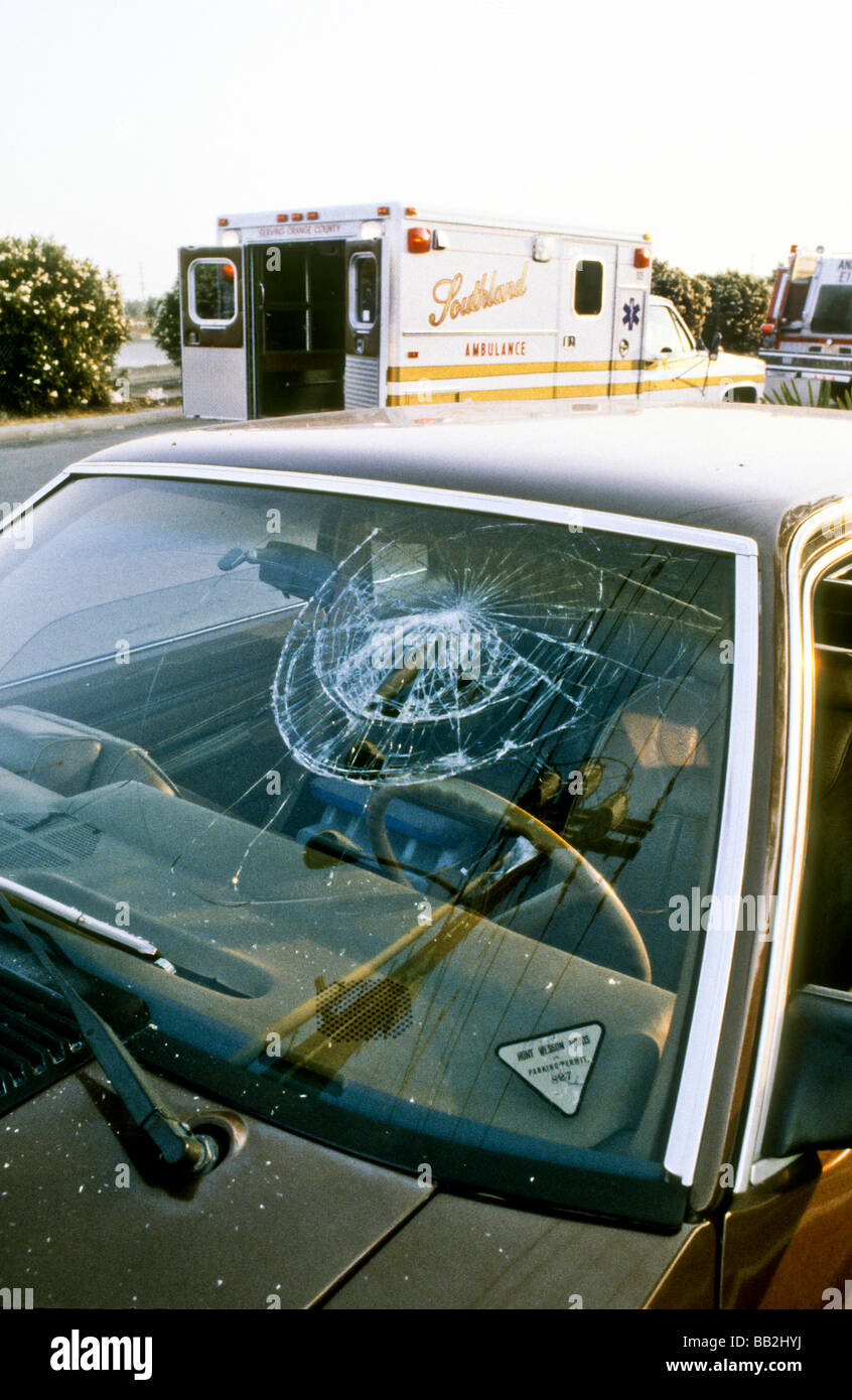 Car Seat On Shopping Cart Death