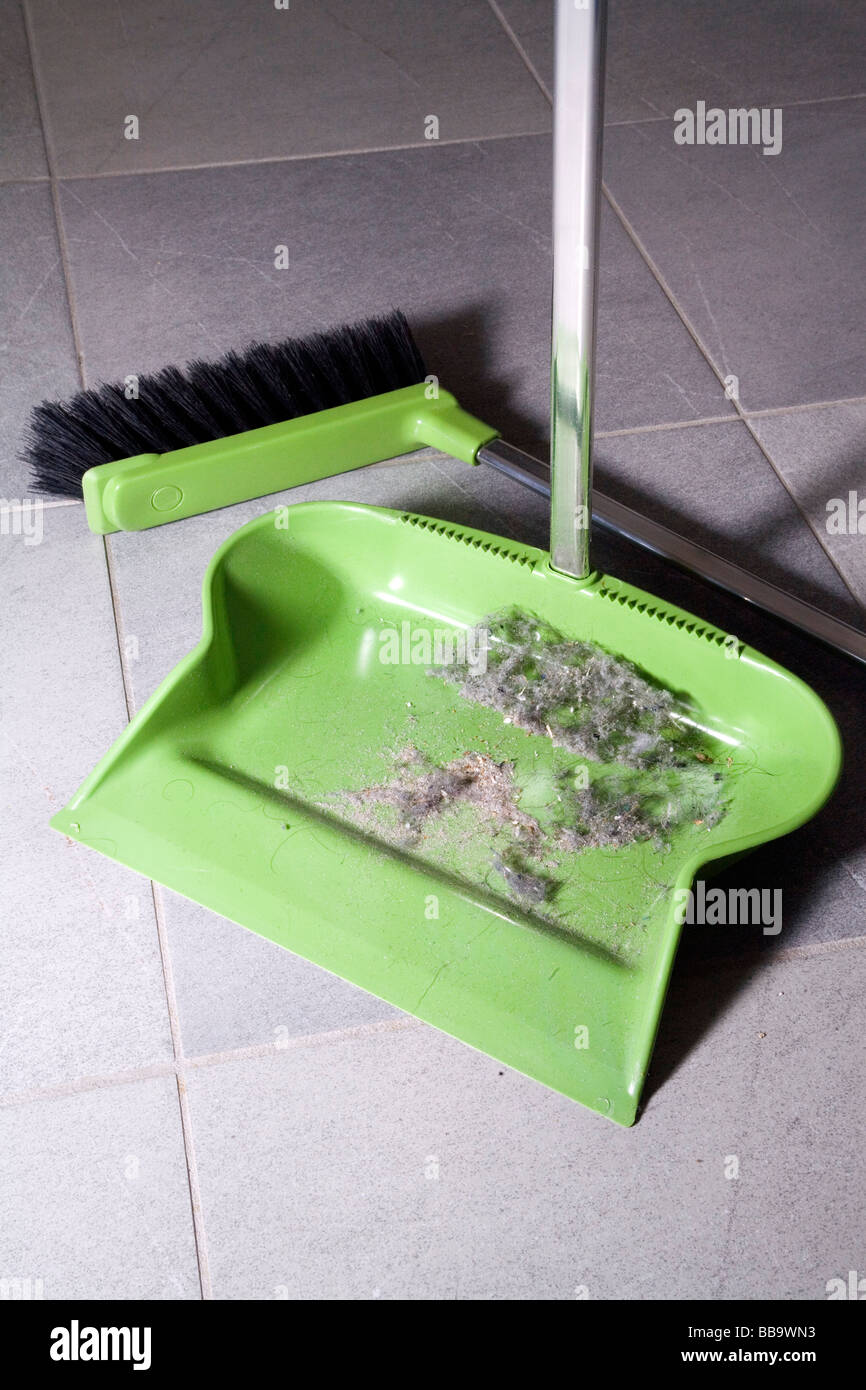 Dustpan on the floor broom and house dust - Stock Image