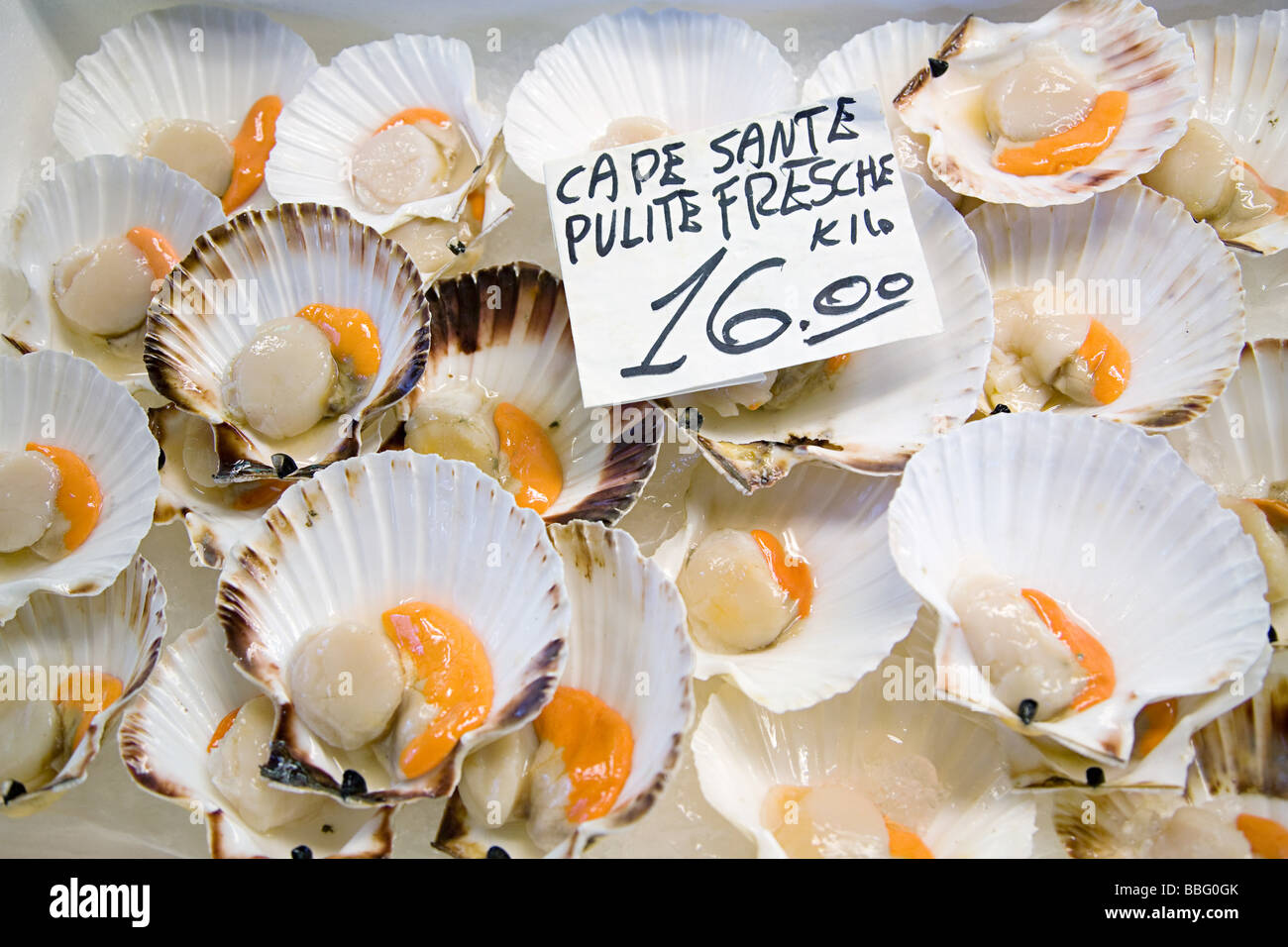 Scallops on a market stall - Stock Image