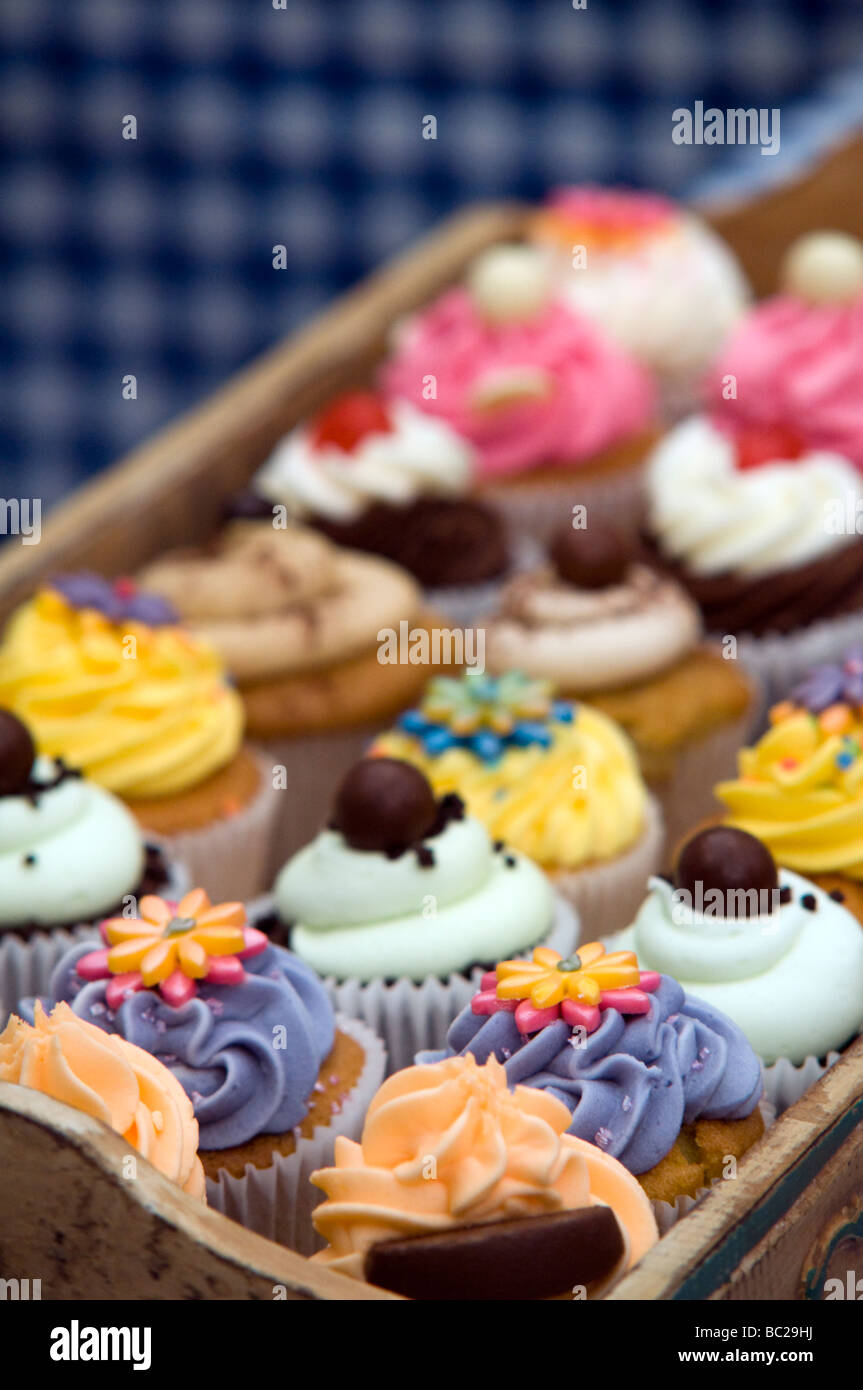 Tray of cup cakes  on display at a Food and Drinks Festival Derbyshire East Midlands England UK - Stock Image