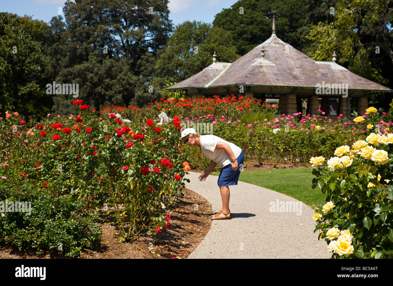 Person smelling flower in the Royal Botanic Gardens Sydney New South ...