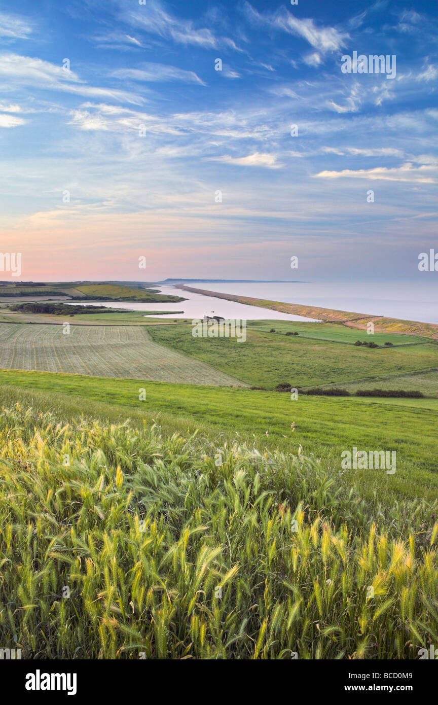 THE FLEET & CHESIL BEACH with views to the Isle of Portland. Jurassic Coast. UNESCO World Heritage Site. Abbotsbury. - Stock Image