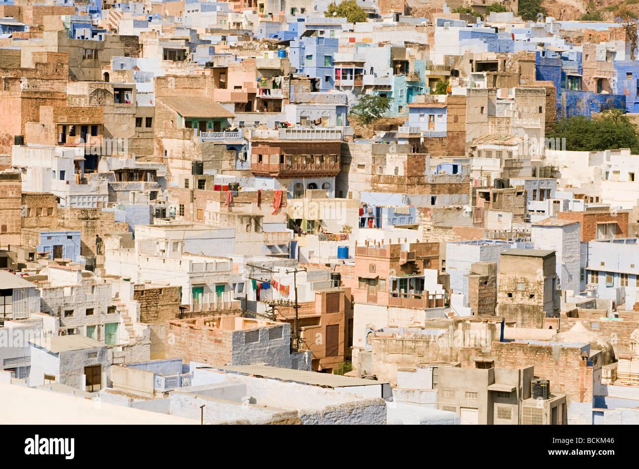 Houses in jodhpur - Stock Image