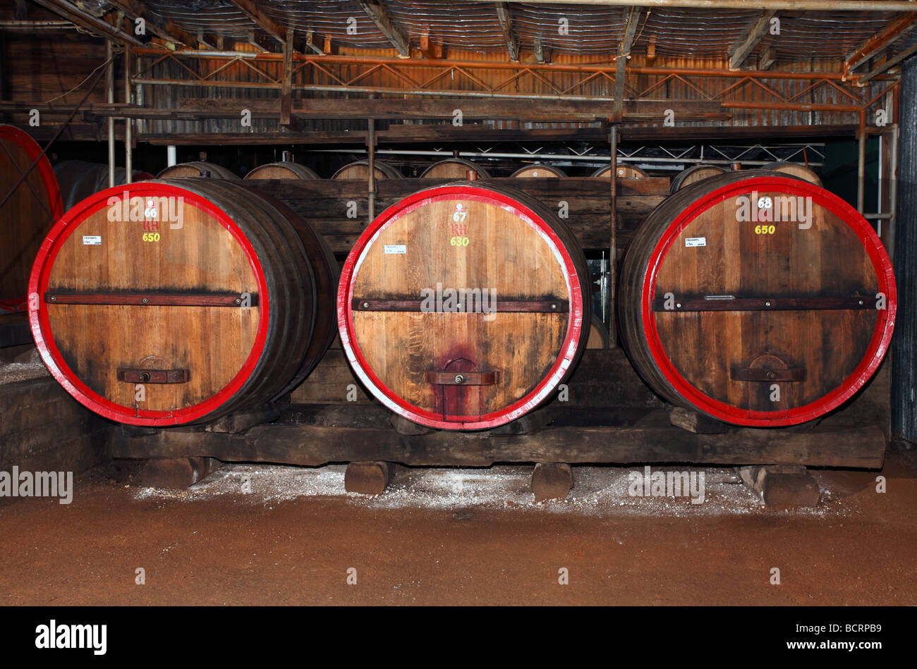 Wine cellar at Tyrrells Winery, Hunter Valley, Australia Stock Photo