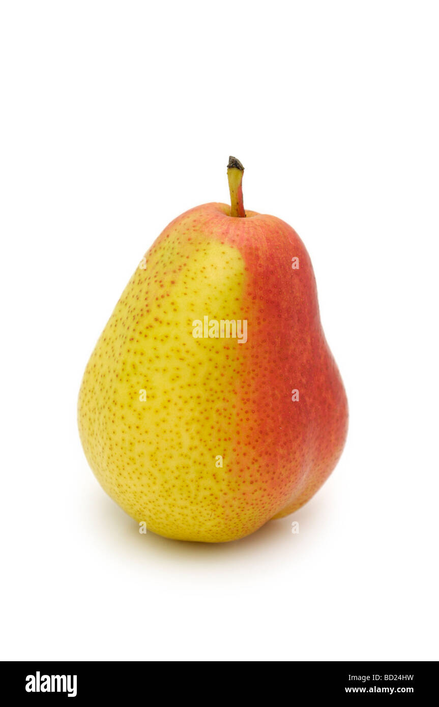 Single Forelle Pear - Stock Image