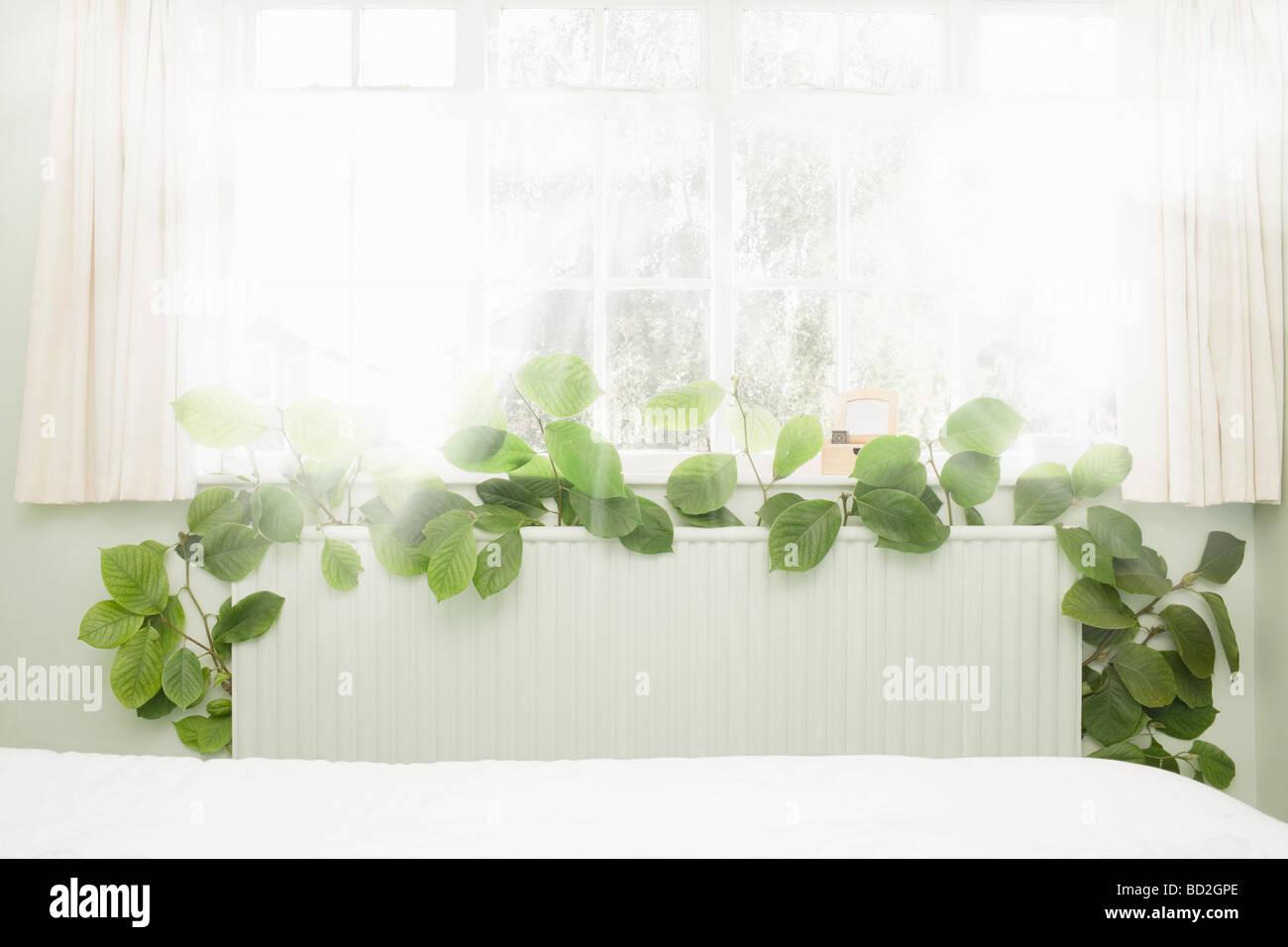 Radiator sprouting green vegetation - Stock Image