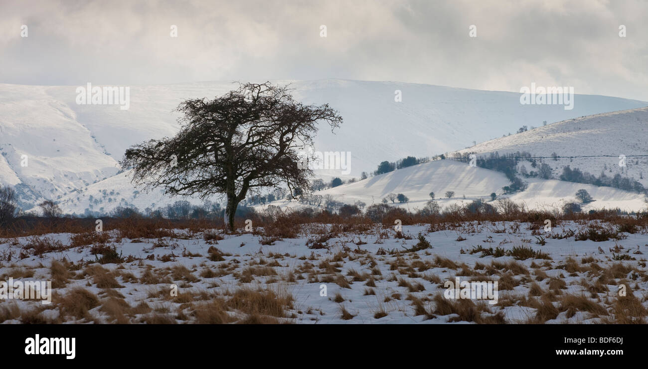 Pen y Fan & Corn Du mountains from Mynydd Illtyd Common Brecon Beacons Powys Wales - Stock Image