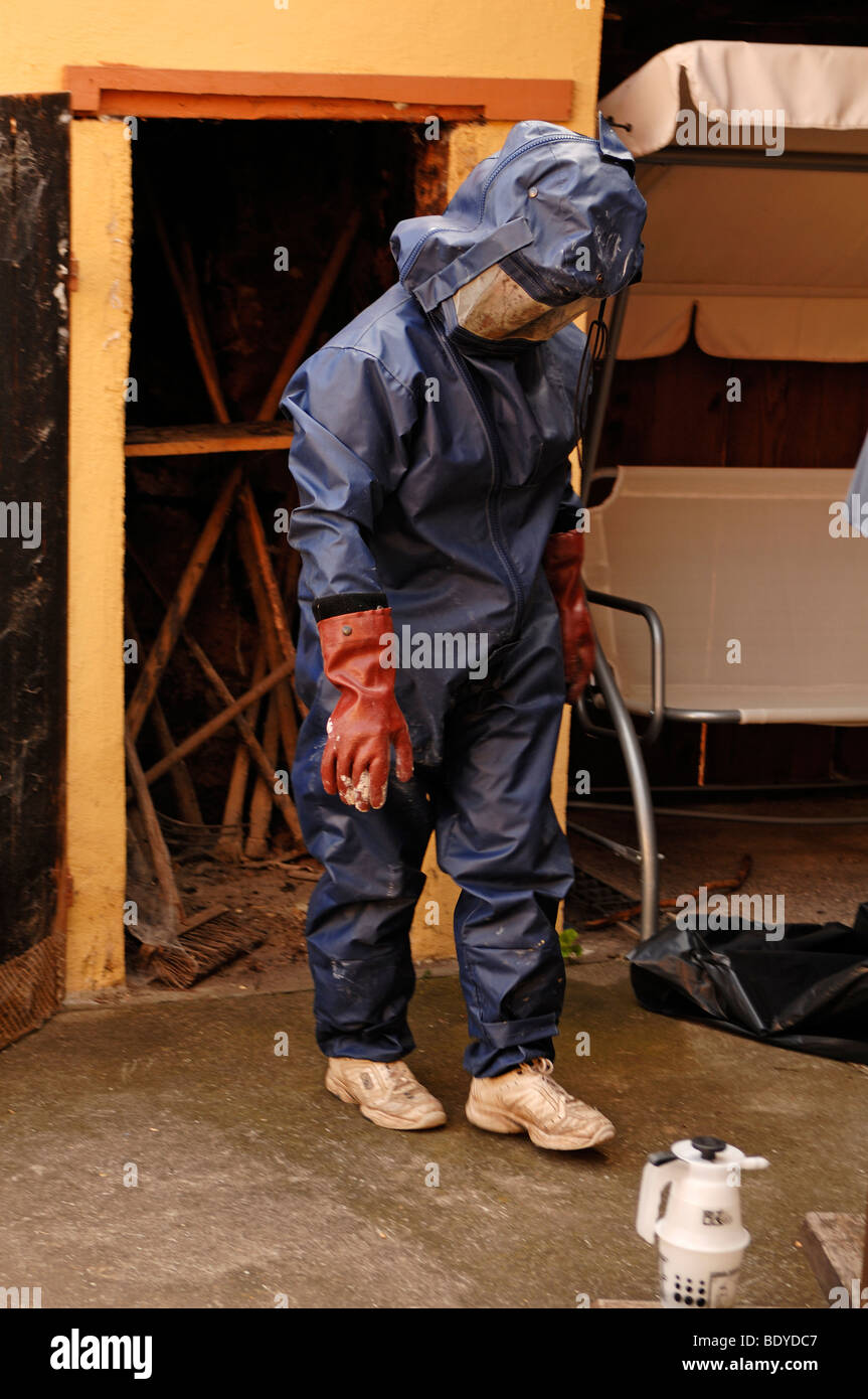 Firefighter in a protective suit against hornets, Illhaeusern, Alsace, France, Europe - Stock Image