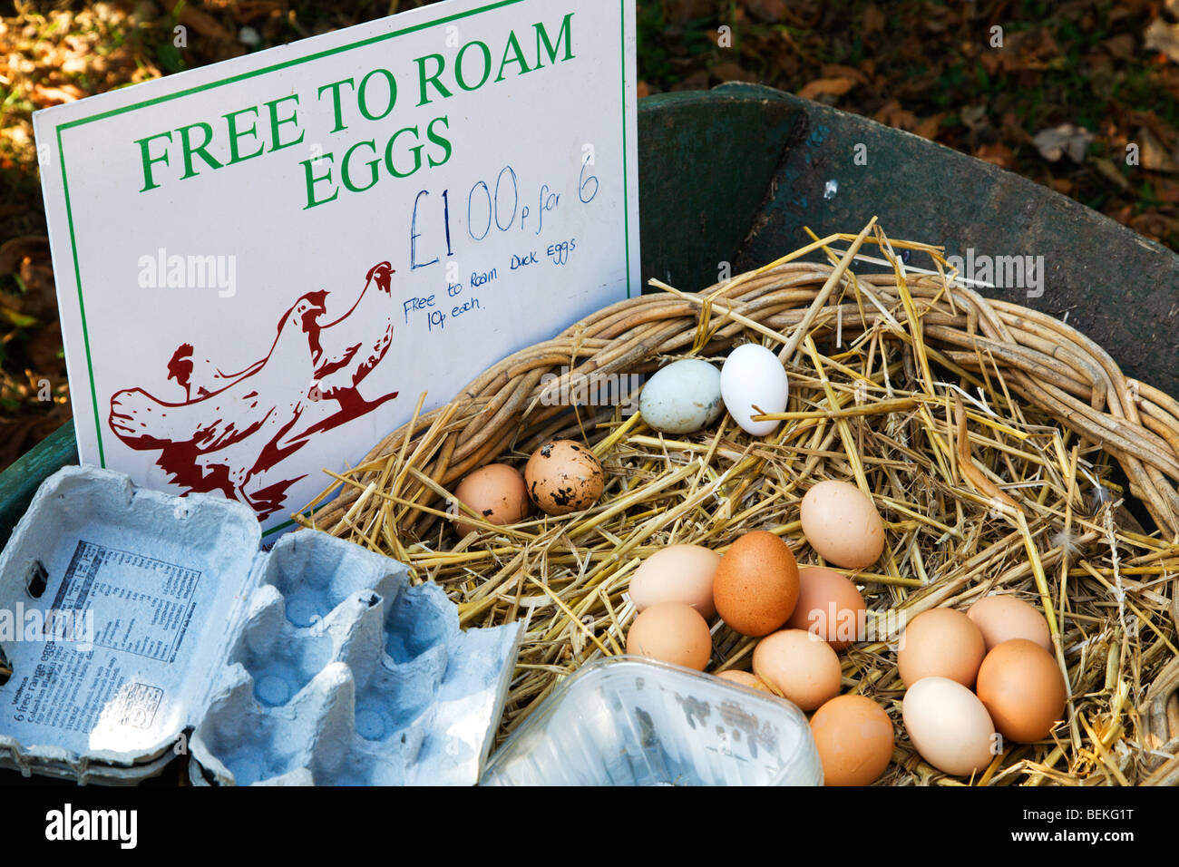 Free to Roam Eggs for sale at a farm Bures Suffolk England - Stock Image