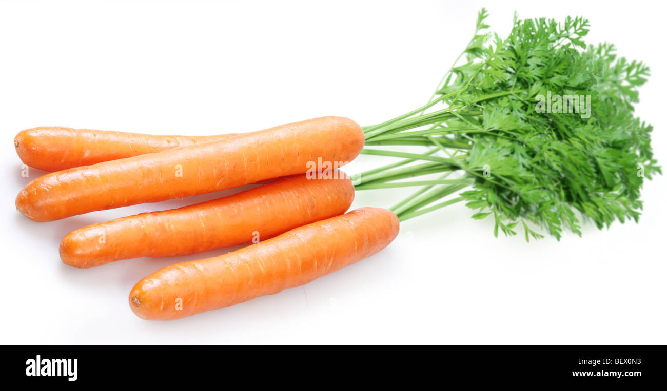 Carrot on a white background - Stock Image