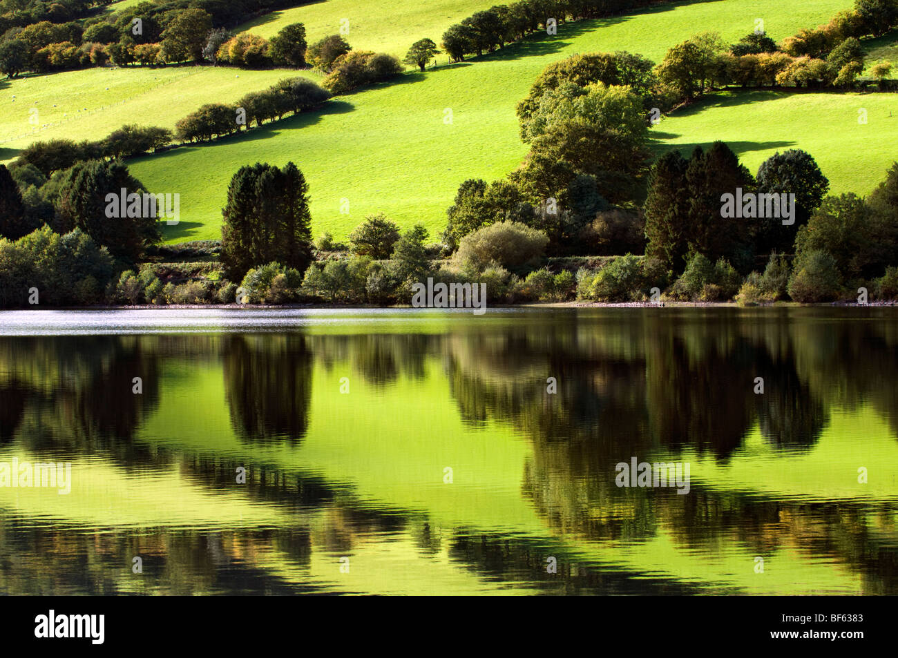 Perfect reflection of green fields at Talybont reservoir, Brecon Beacons in Wales taken on beautiful bright sunny - Stock Image
