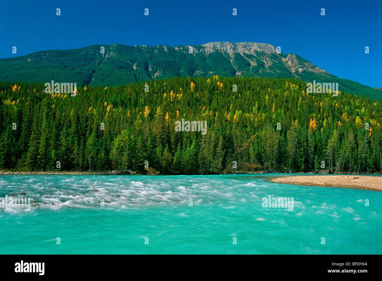 Kicking Horse River, Yoho National Park, British Columbia, Canada - Stock Image