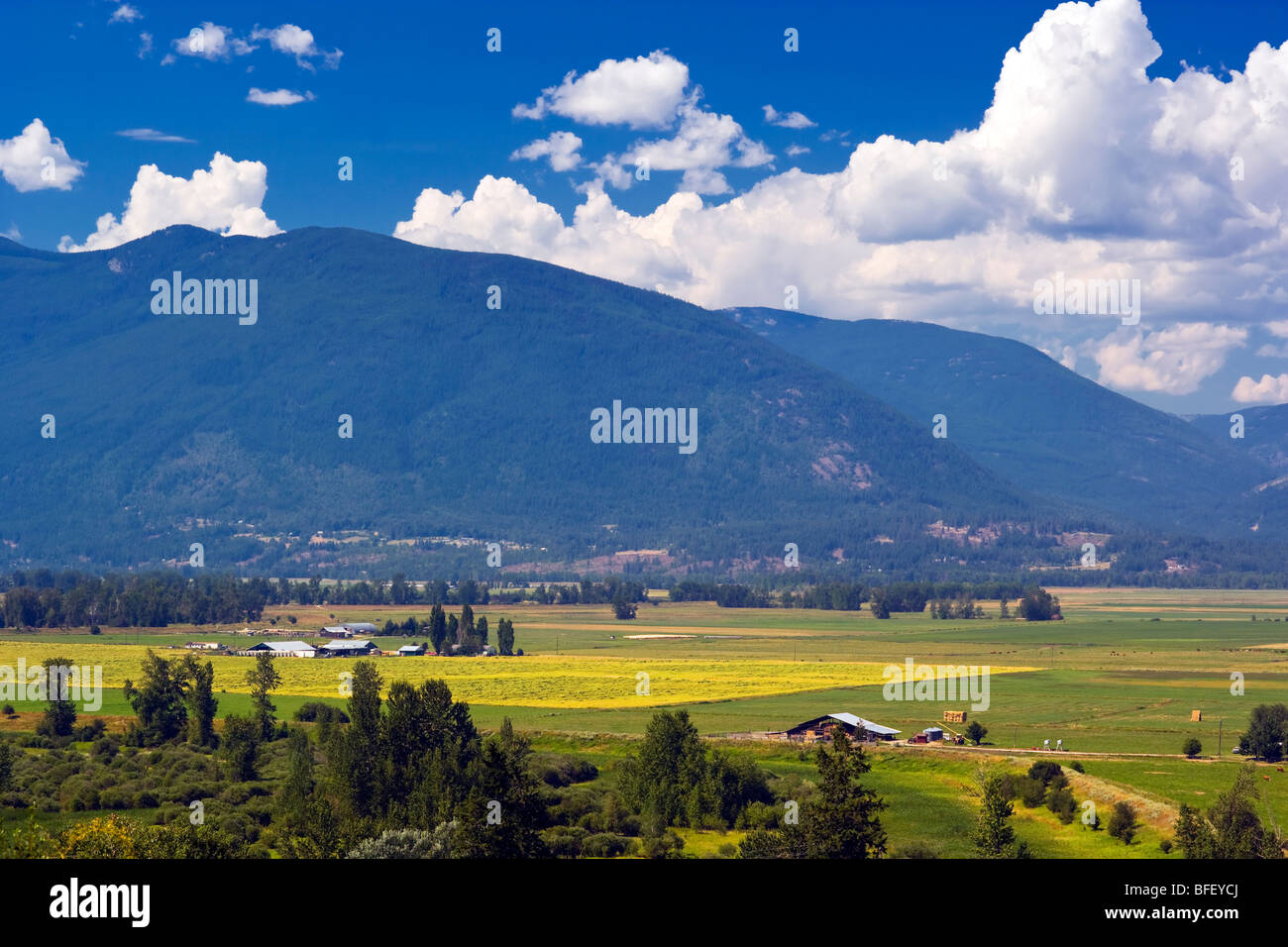 Farms in fertile Creston Valley, British Columbia, Canada, agriculture - Stock Image
