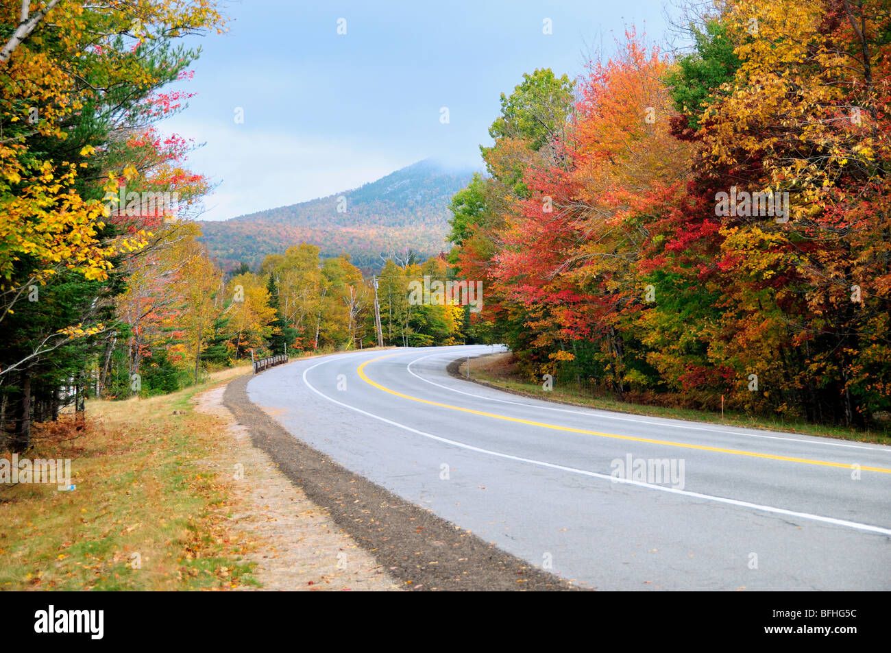 a-road-winds-through-the-misty-saturated