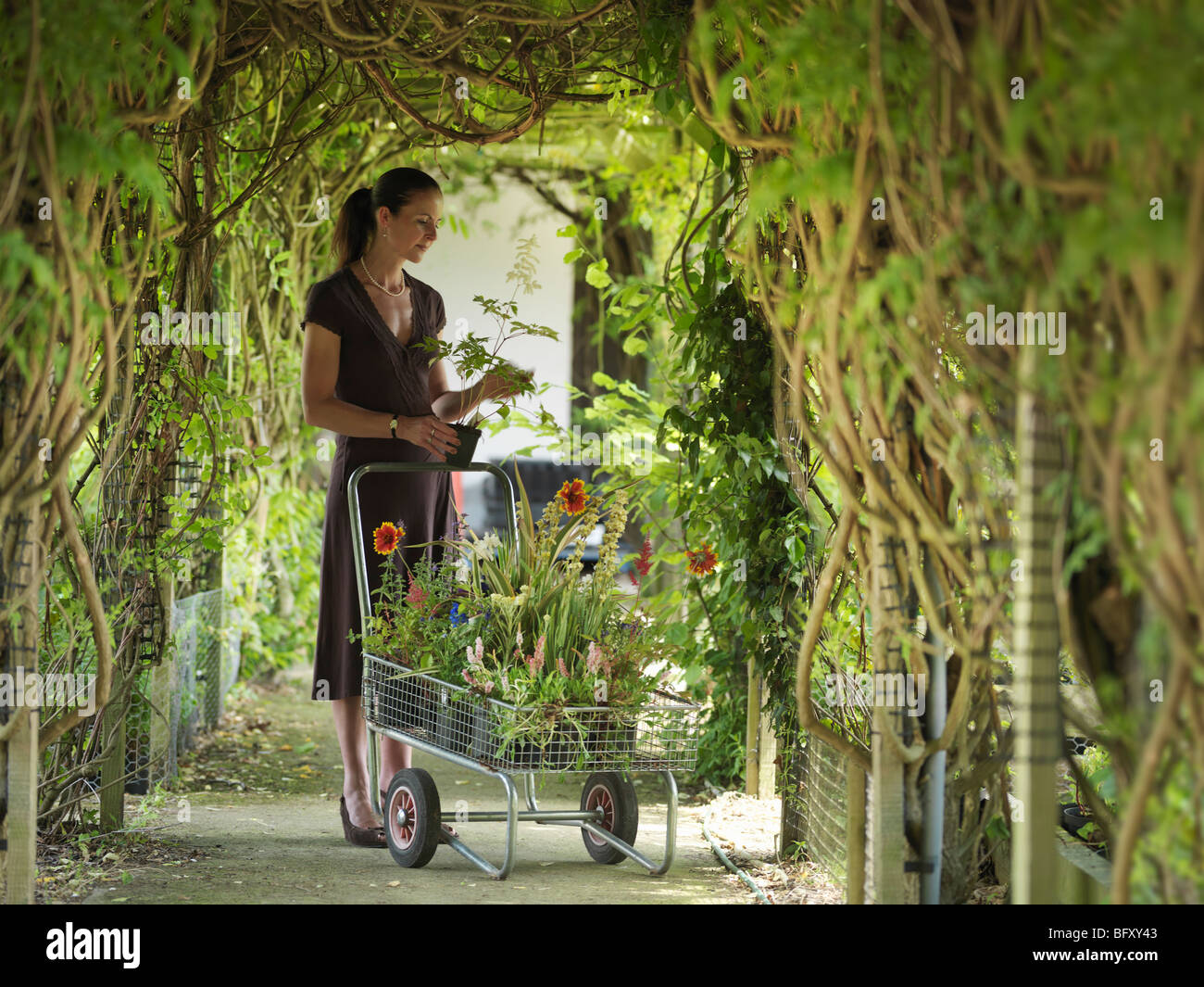 Lady Buying Plants At Garden Center - Stock Image