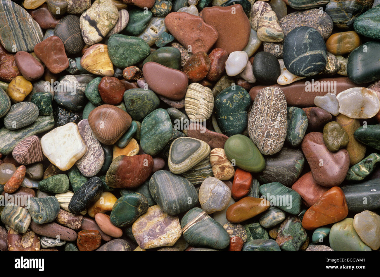 Beach pebbles collected from Agate Beach on Kupreanof Island in Southeast Alaska, USA Stock Photo