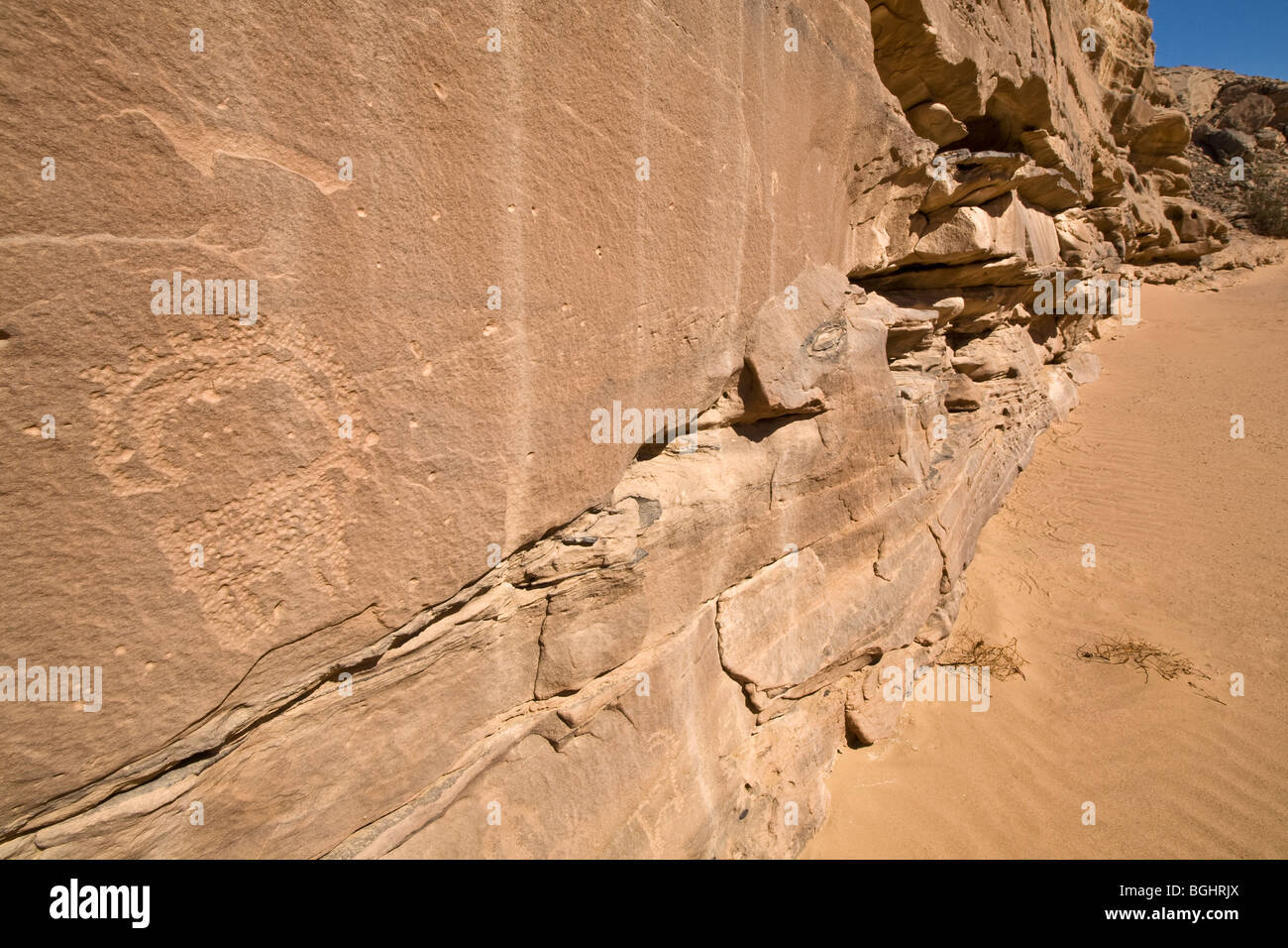 View along sandy wadi floor showing rock-Art of Ibex in the Eastern Desert of Egypt. - Stock Image