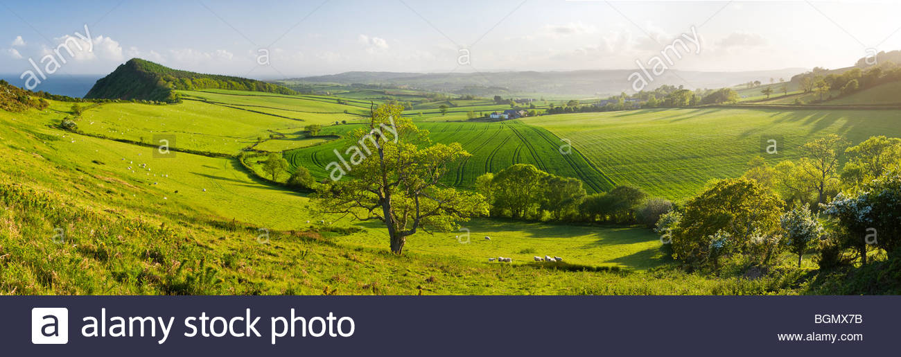 View from Peak Hill, near Sidmouth, East Devon, England. - Stock Image
