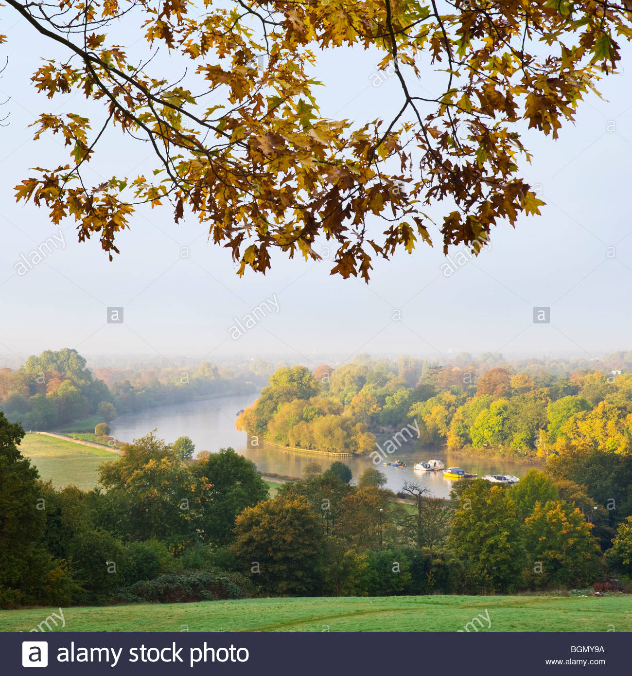 The river Thames from Richmond Hill, Surrey. - Stock Image