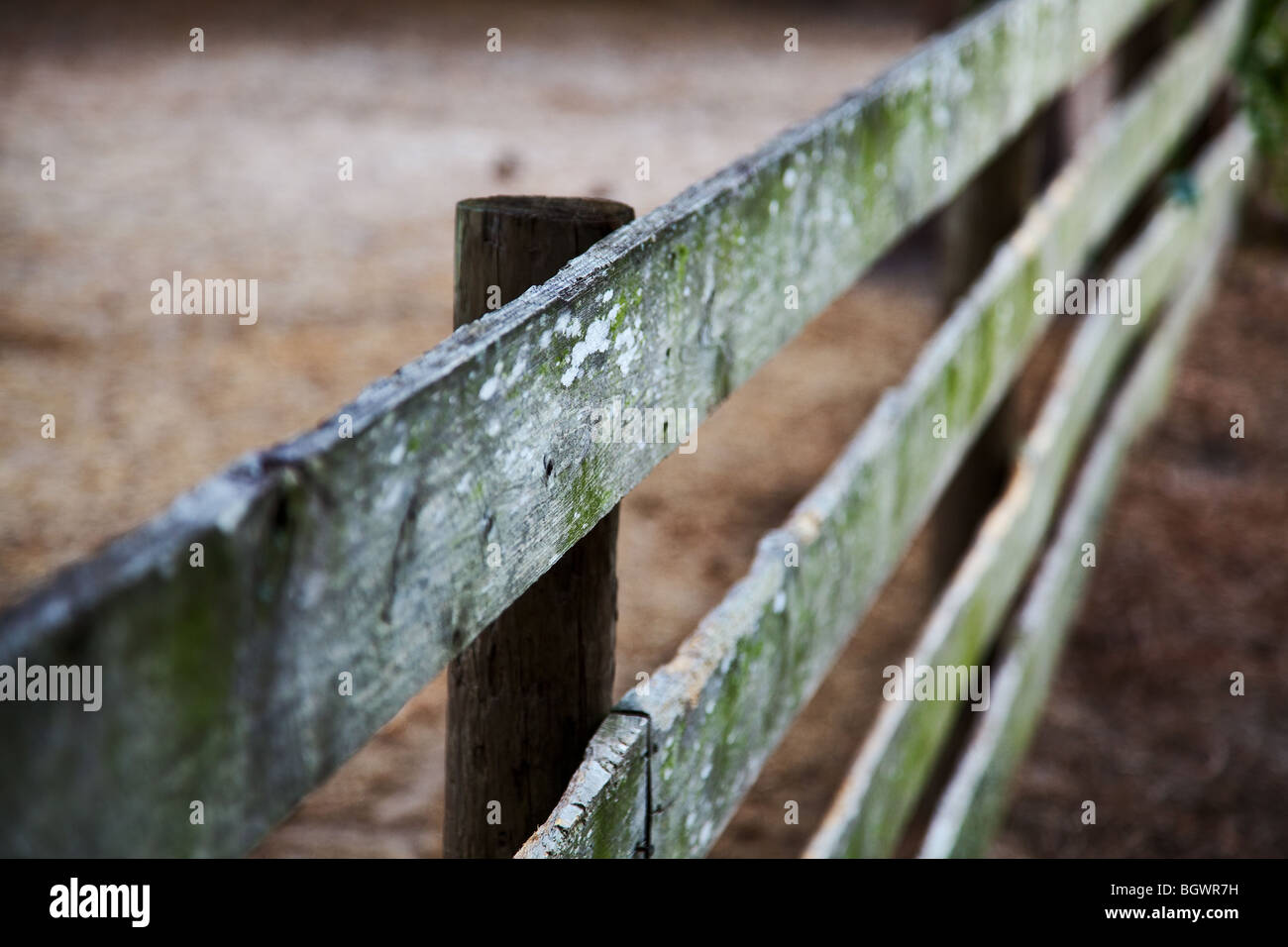 old wooden fence on a diagonal angle - Stock Image