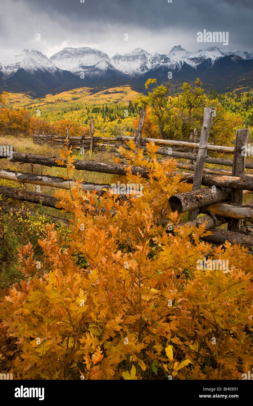 Autumn colors and the Sneffels Range, San Juan Mountains, Colorado. - Stock Image