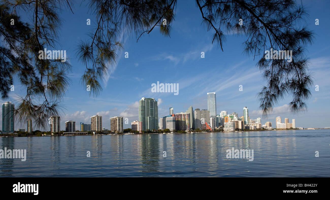 The Miami Skyline, Miami, Florida - Stock Image