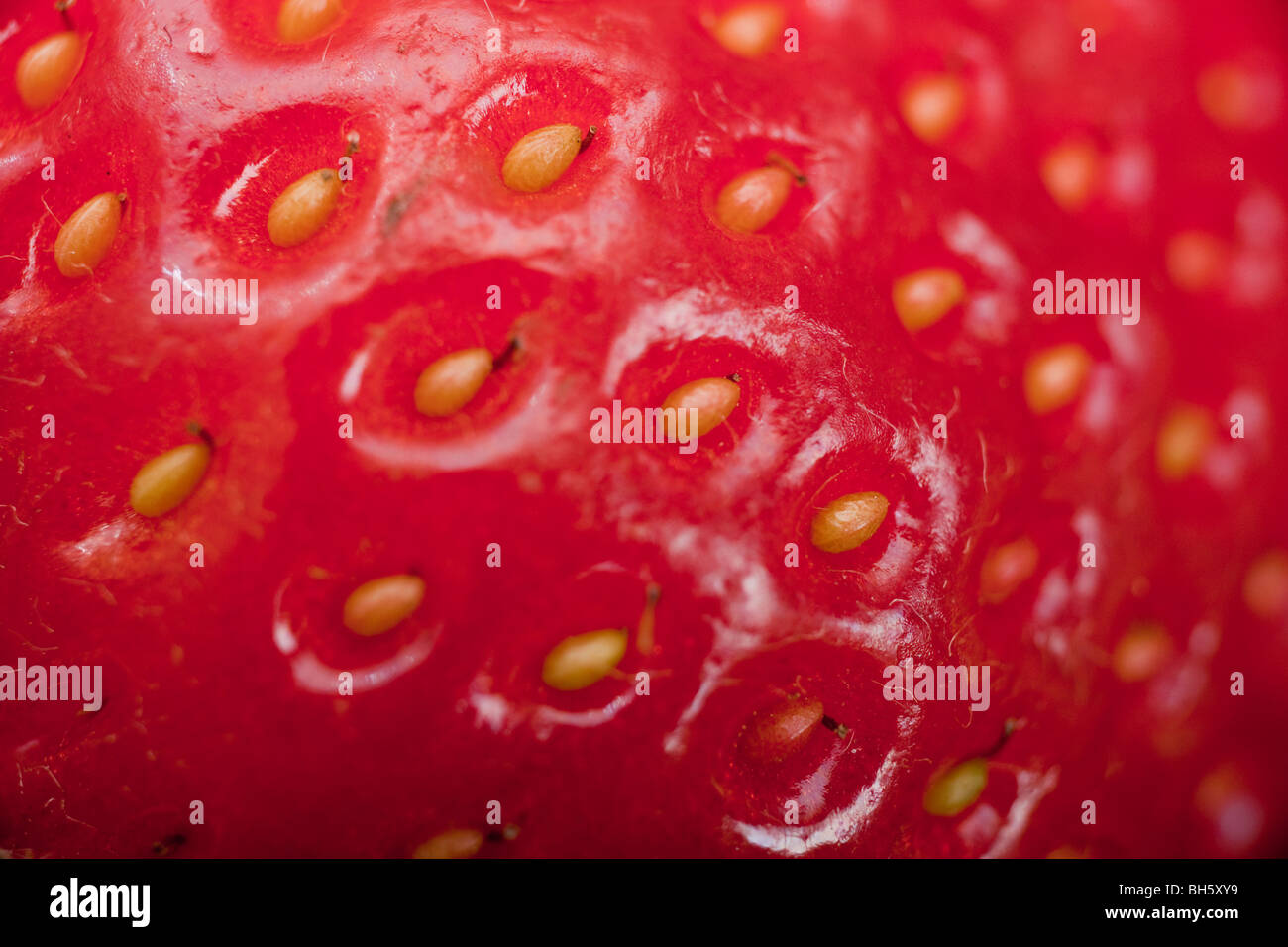 Extreme macro shot of a strawberry. Individual seeds can be seen. - Stock Image