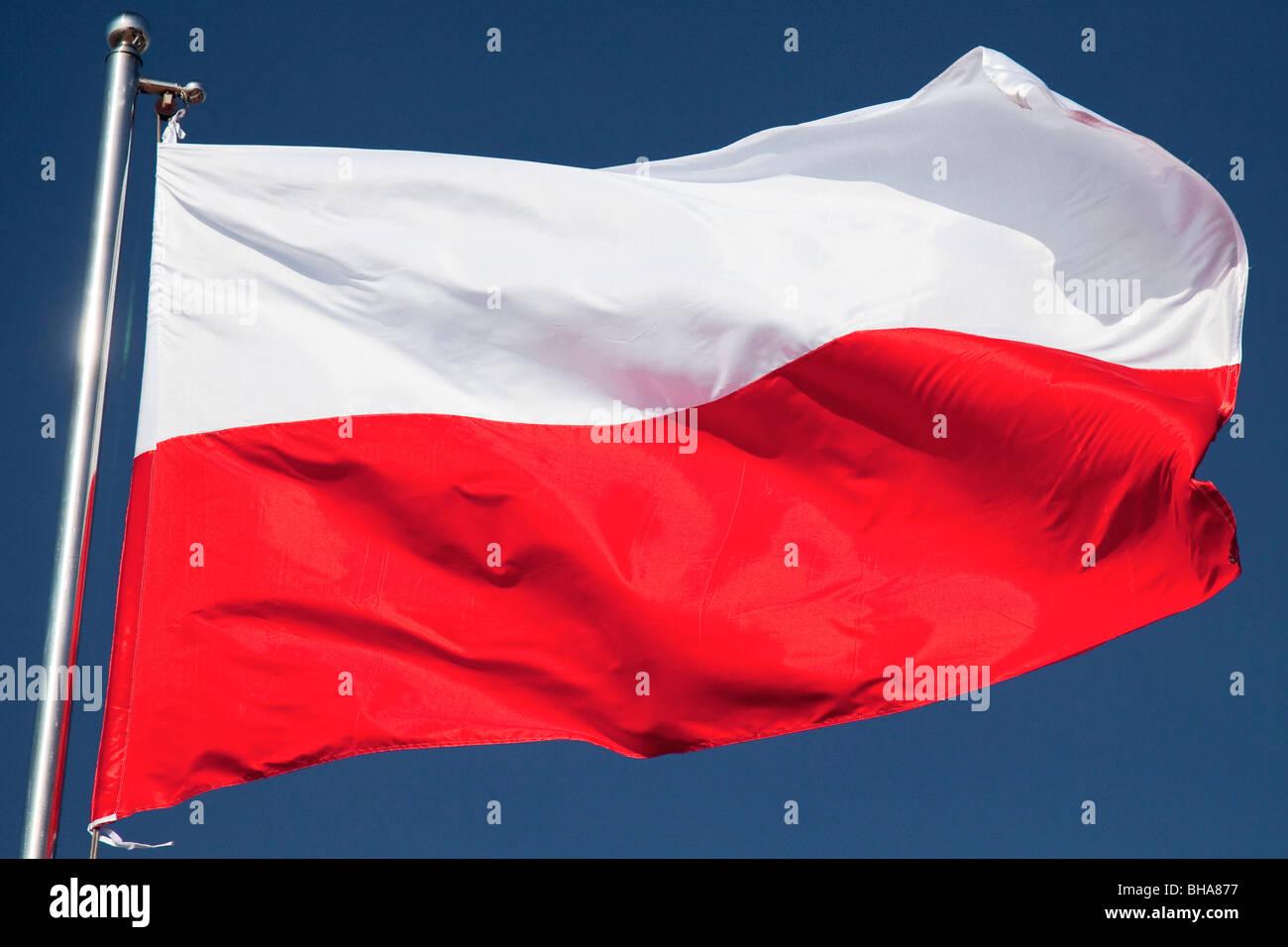 Flag of Poland - Stock Image