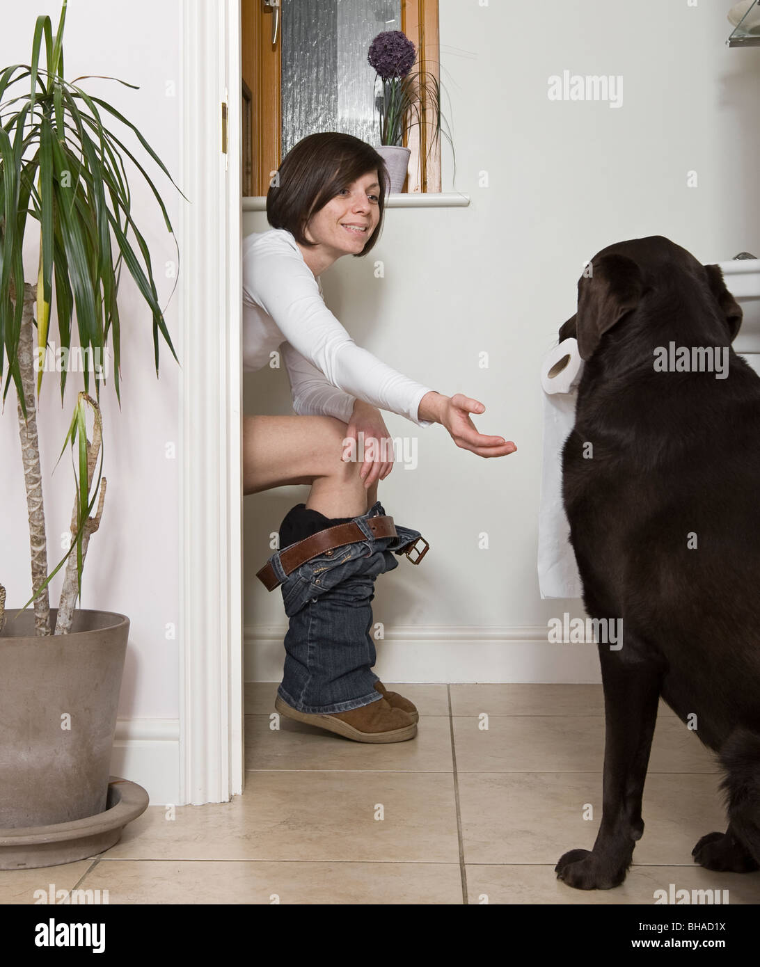 Shot Of A 30s Woman In The Bathroom And Dog Bringing The Toilet Roll