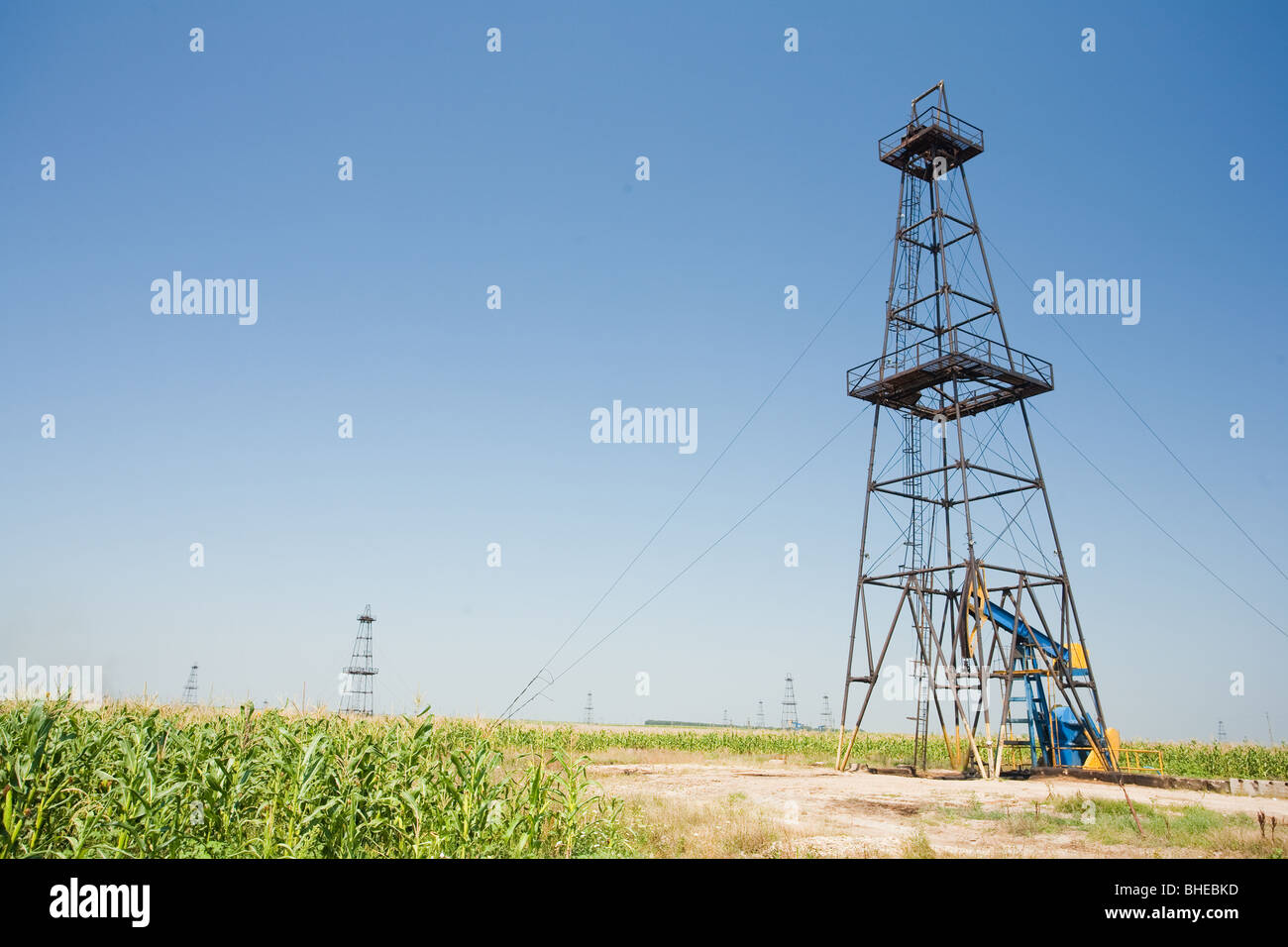 Oil well field in a middle of a corn field. Agriculture and industry. - Stock Image