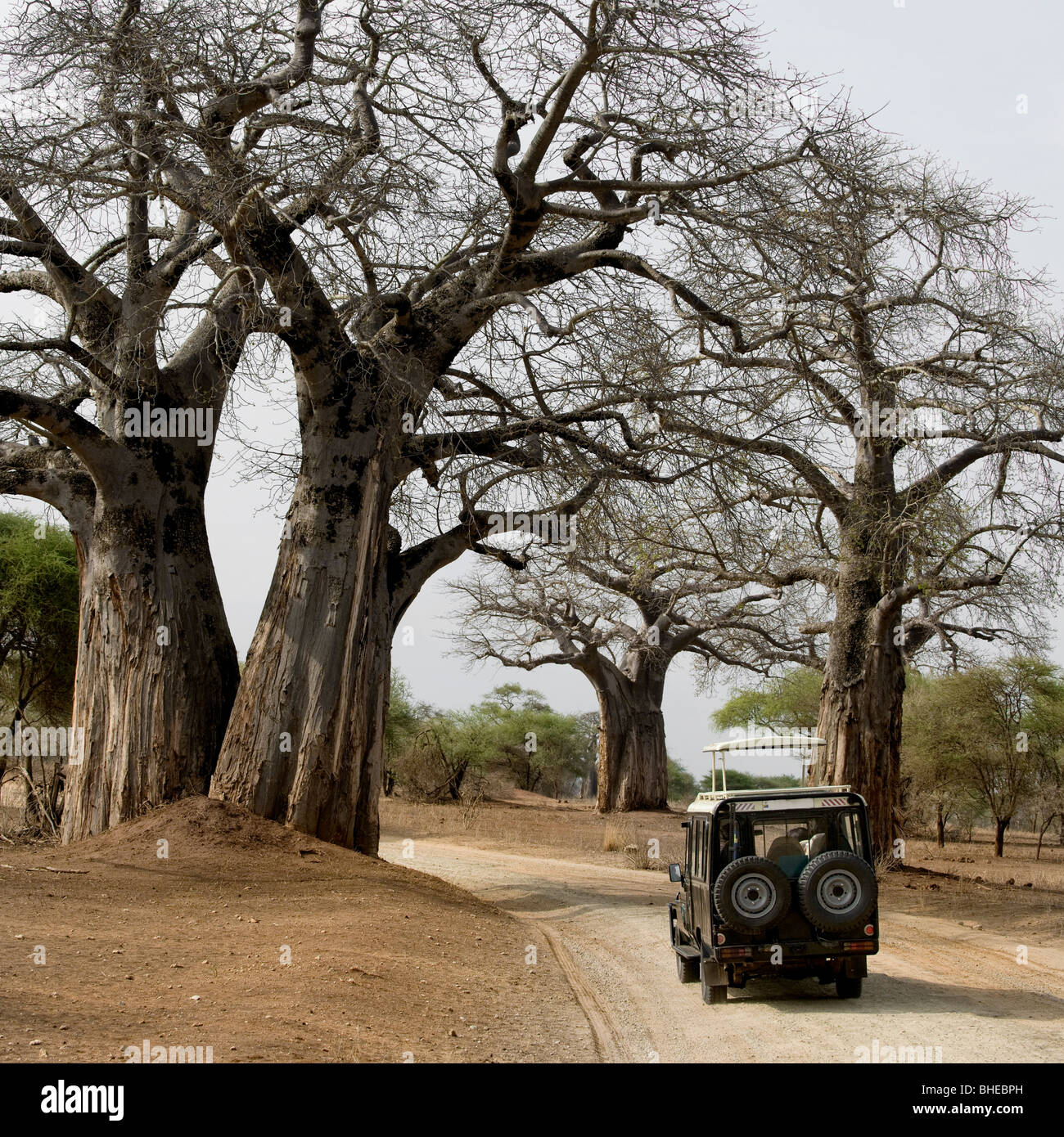 Jeep on dirt road in Africa - Stock Image