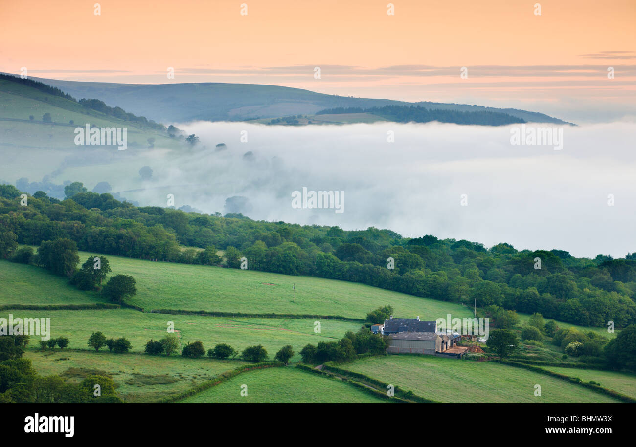 Isolated farm on a valley slope on a misty dawn, Brecon Beacons National Park, Powys, Wales. Summer (June) 2009 - Stock Image