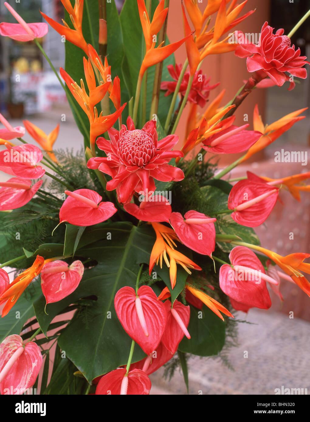Tropical flowers bouquet phuket phuket province thailand stock tropical flowers bouquet phuket phuket province thailand izmirmasajfo