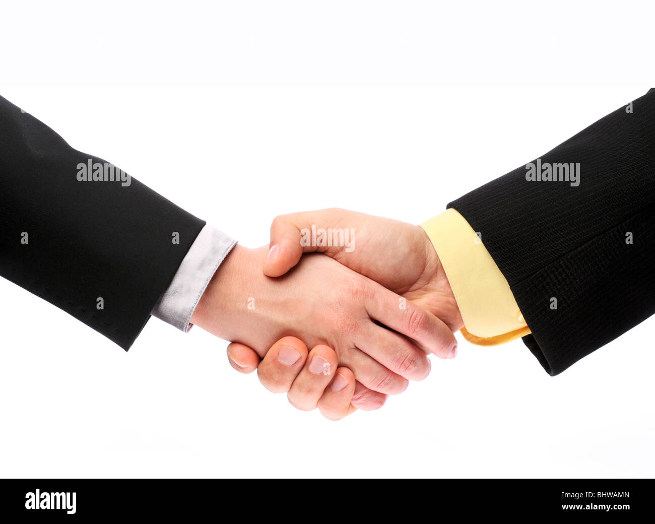 handshake, men and women on a white background - Stock Image