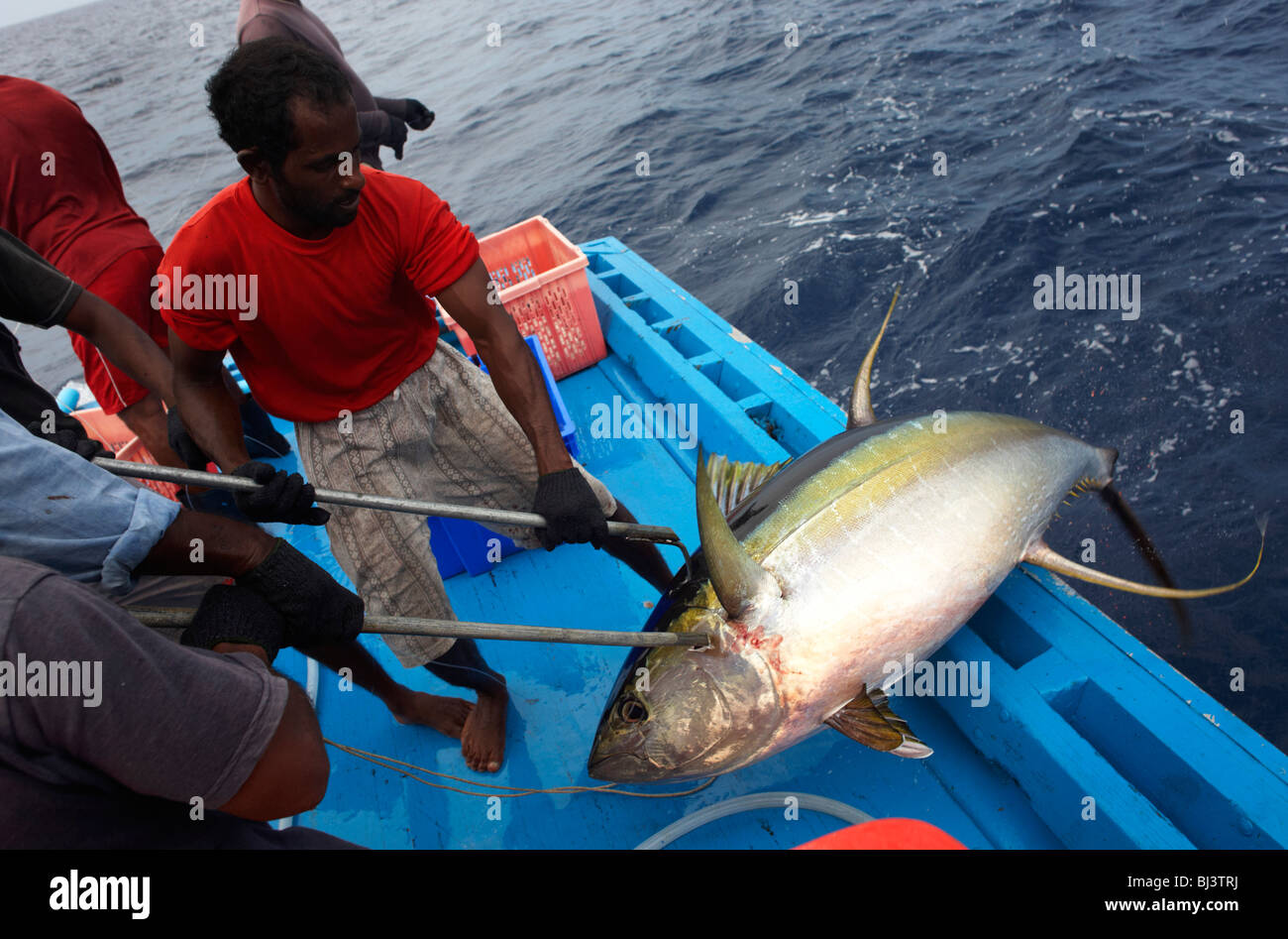 fishermen-from-the-maldives-haul-aboard-