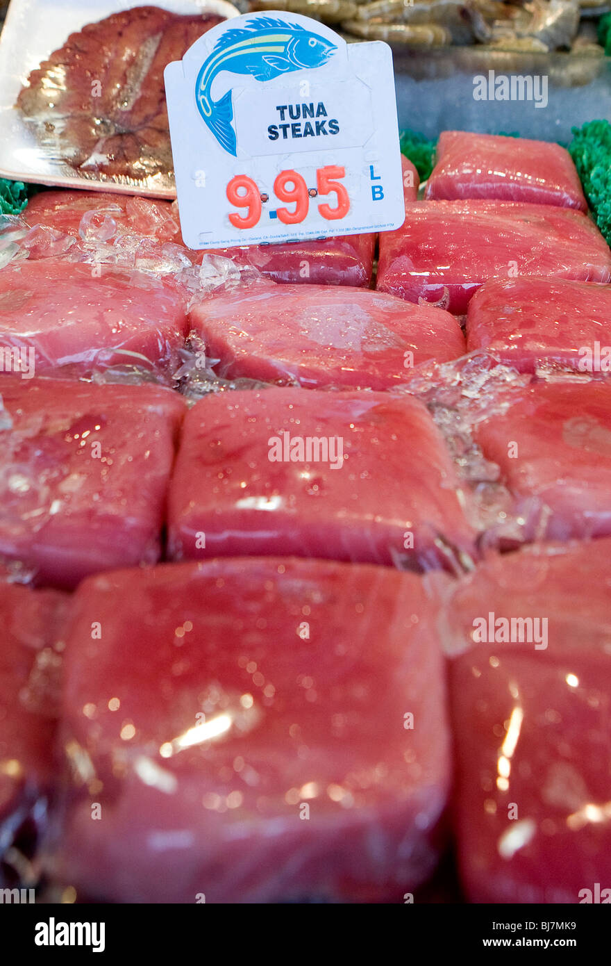 Tuna steaks on sale at a fish market.  - Stock Image