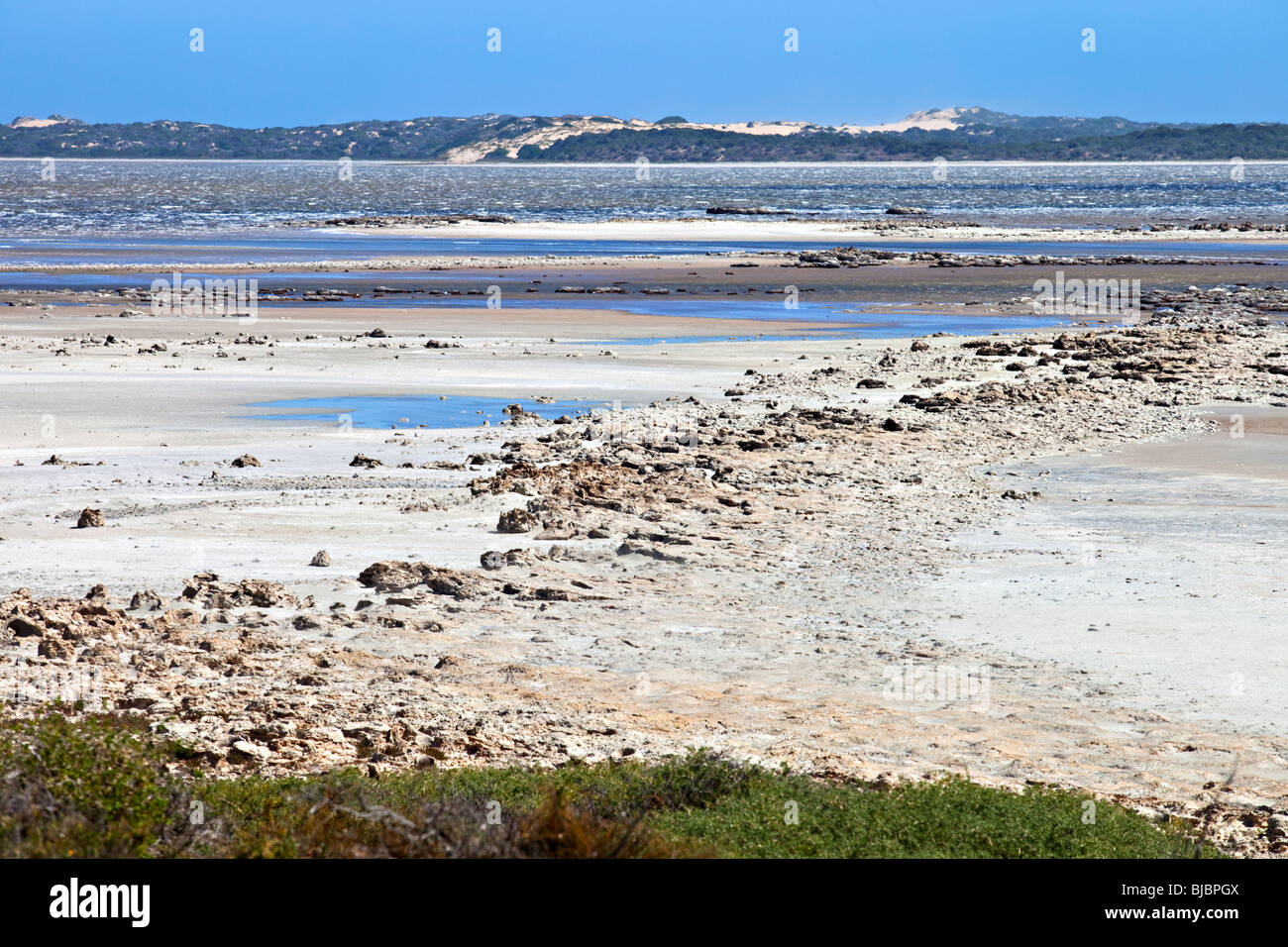 Coorong National Park, South Australia Stock Photo