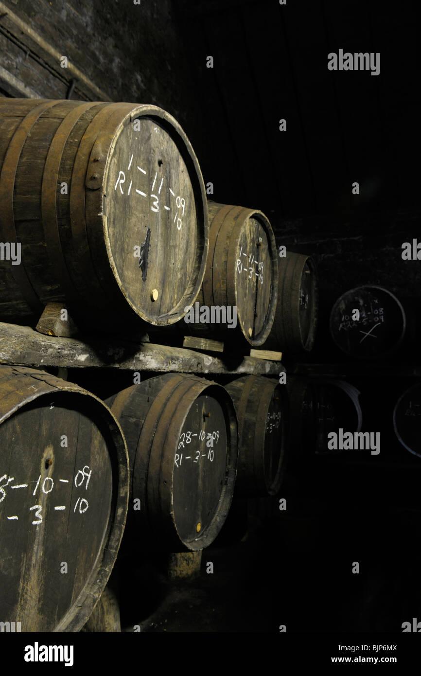 cider barrels - Stock Image
