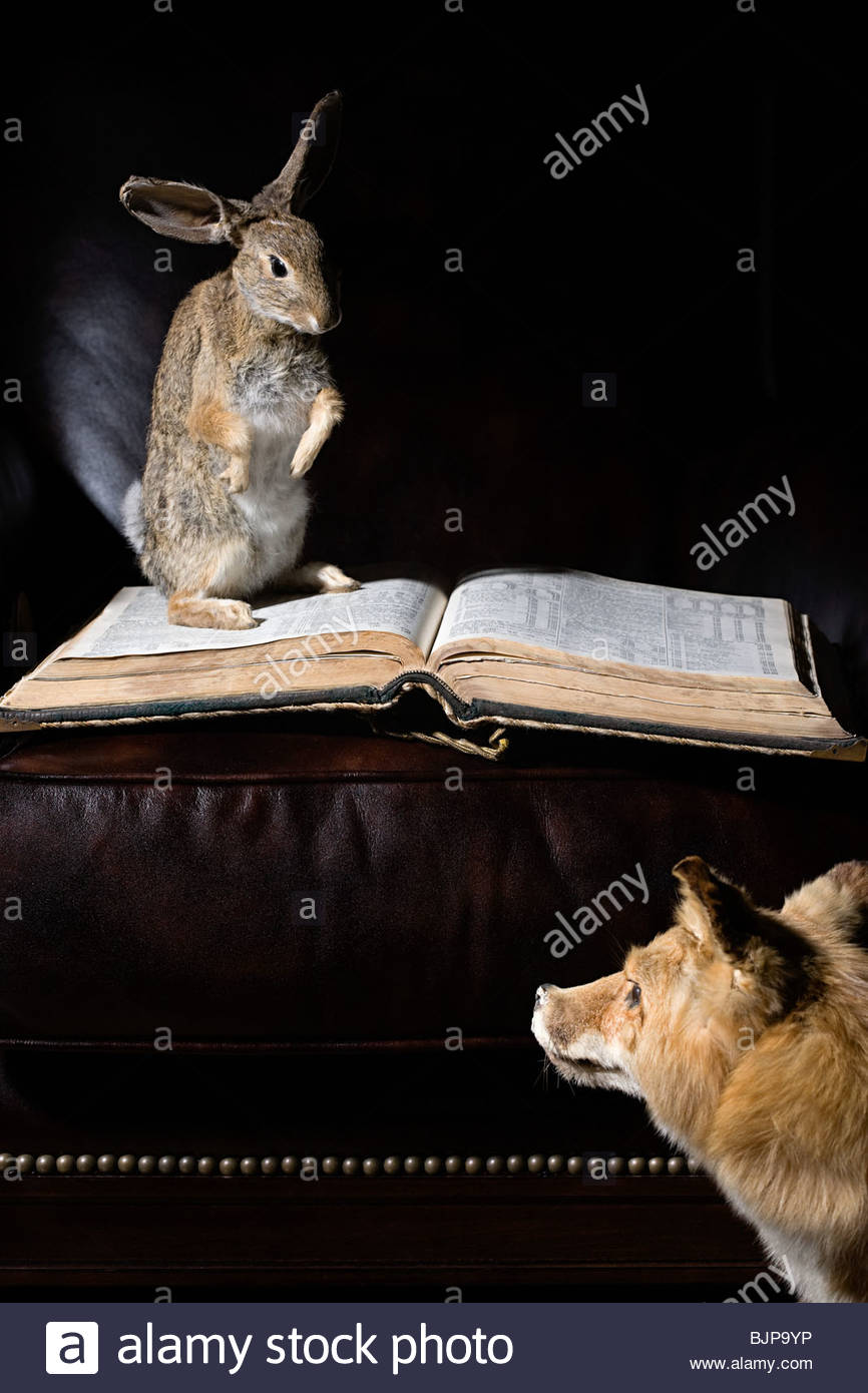 Fox and hare with book - Stock Image