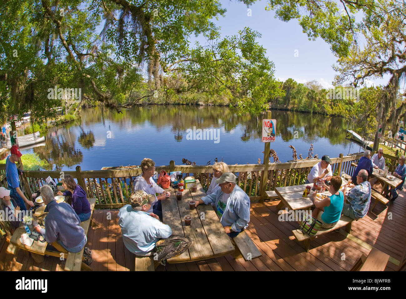 Snook stock photos snook stock images alamy for Marys fish camp fl