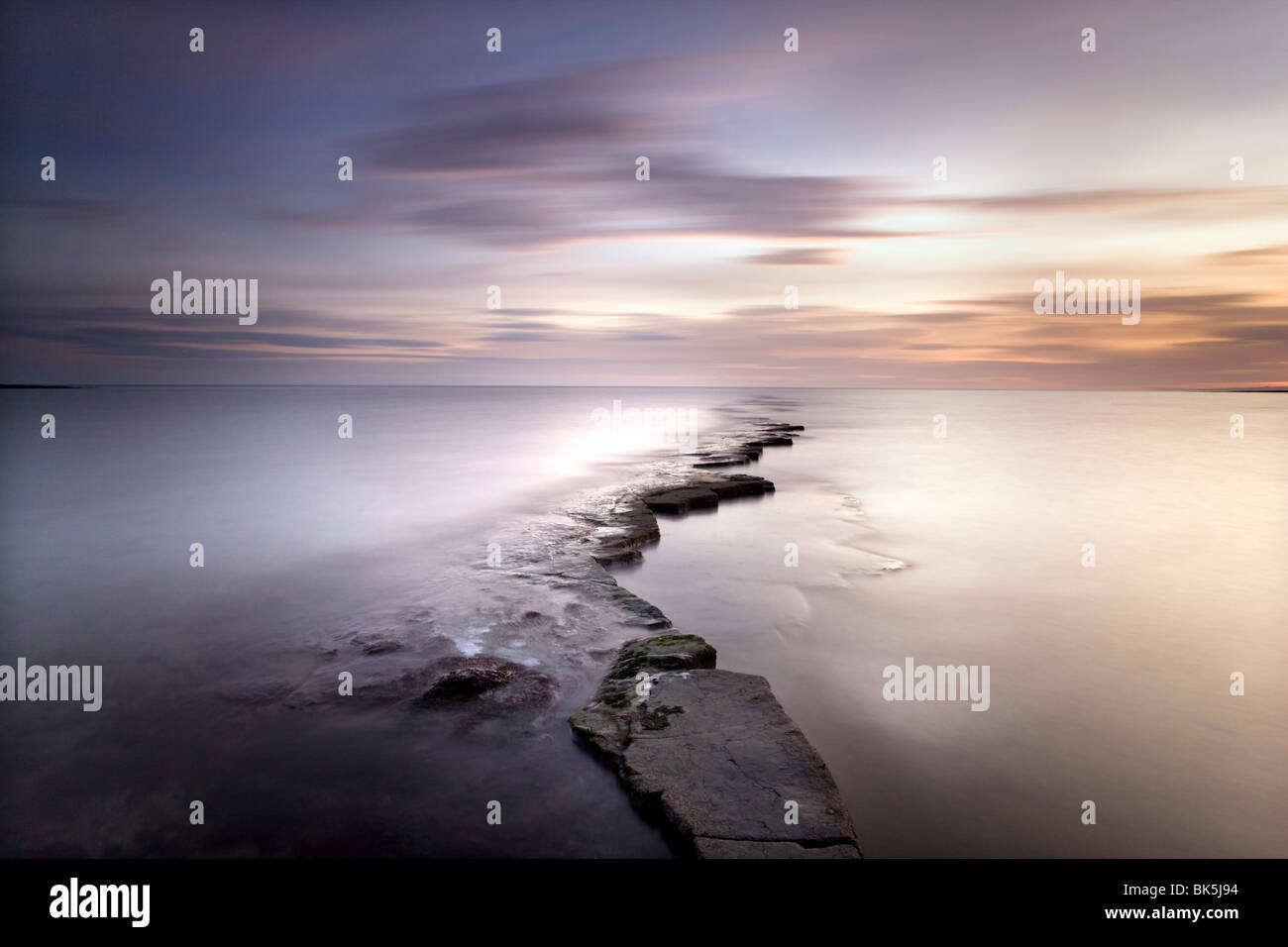 Kimmeridge Bay at dusk showing wave-cut platform known locally as The Flats, Perbeck District, Dorset, England, - Stock Image