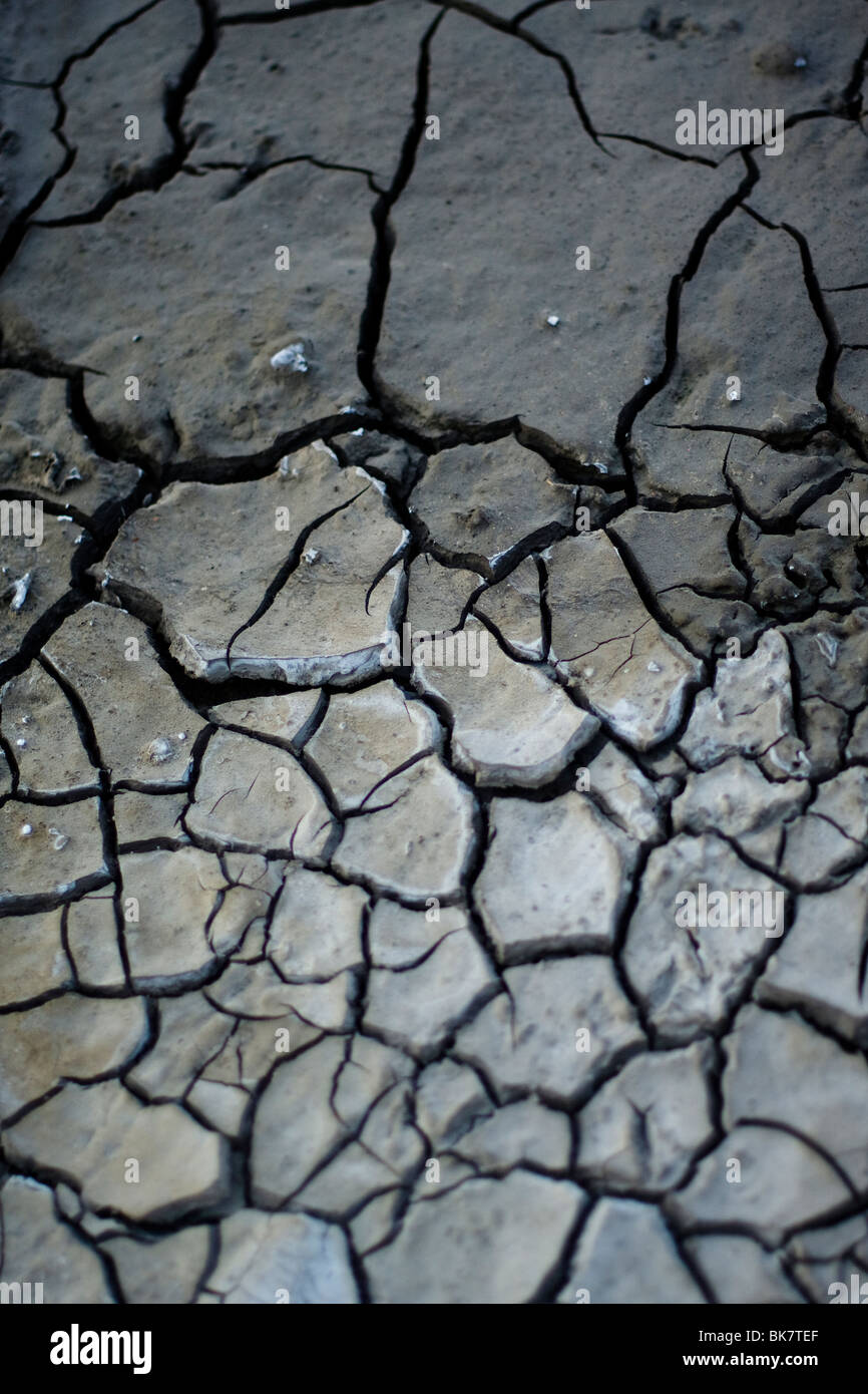Close up detail of dried earth. - Stock Image