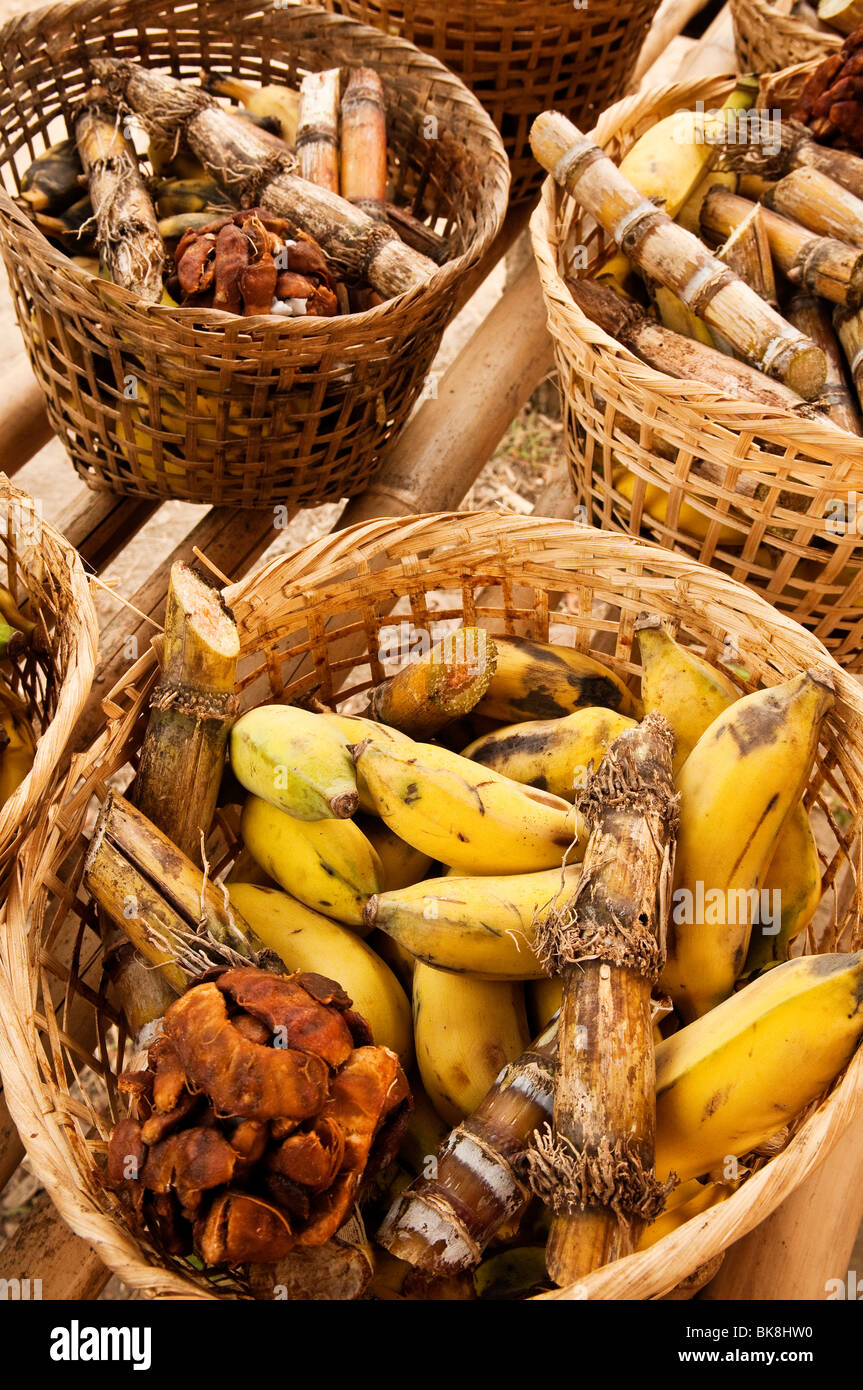 Baskets of food for elephants - bananas, sugar cane and tamarind - at Patara Elephant Farm; Chiang Mai province, - Stock Image