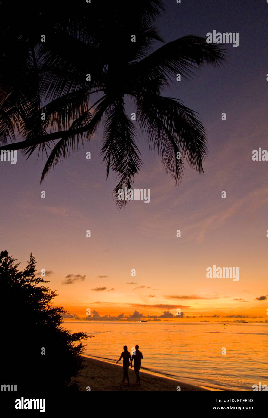 Palm trees at the beach of Biyadhoo Island at sunset ,Couple, Indian Ocean , South Male Atoll , Maldives - Stock Image