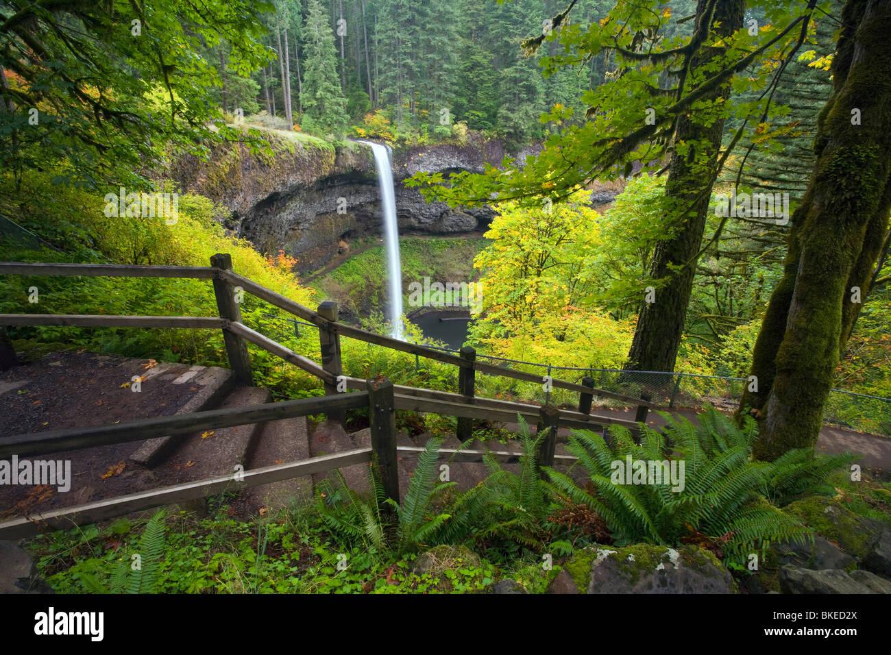 South Silver Falls, Silver Falls State Park, Oregon, Usa - Stock Image