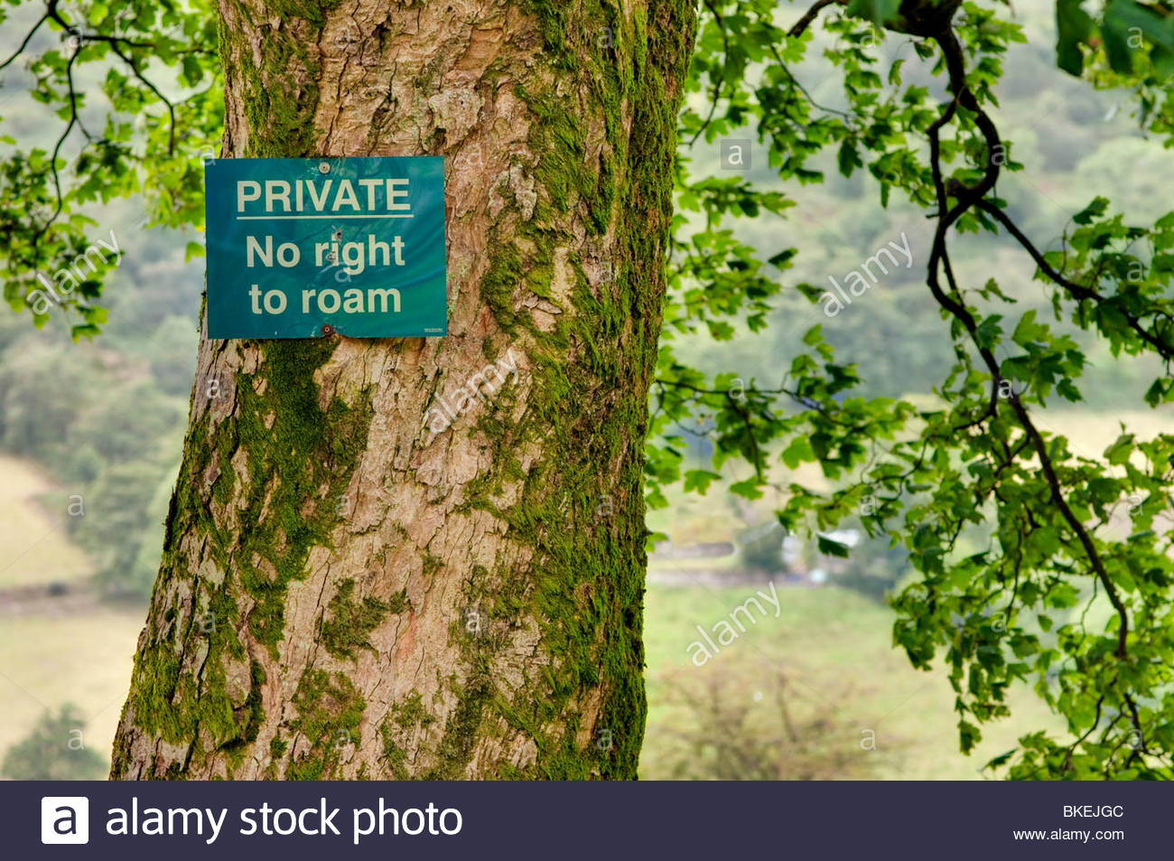 Private No Right to Roam Sign, in the Brecon Beacons, Powys, Wales; UK - Stock Image