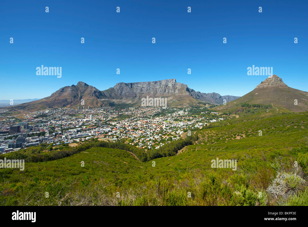 View of Table Mountain, Devil's Peak (left), Lion's Head (right) and the city of Cape Town on a cloudless - Stock Image