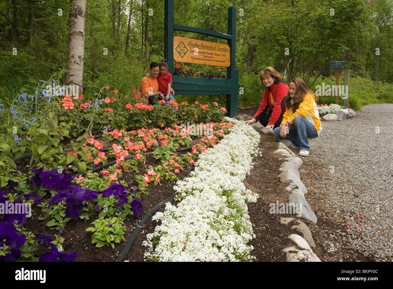family enjoys flower ak botanical garden anchorage sc summer - Alaska Botanical Garden